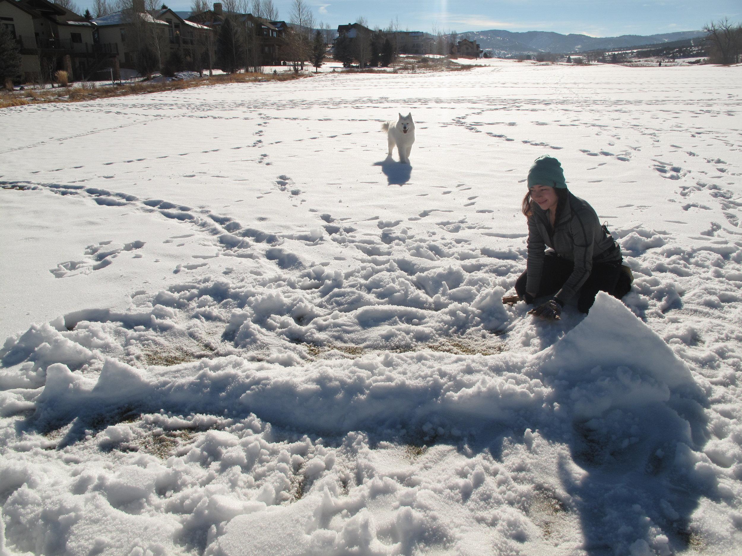 KILLER MONSTER SNOWGOONS