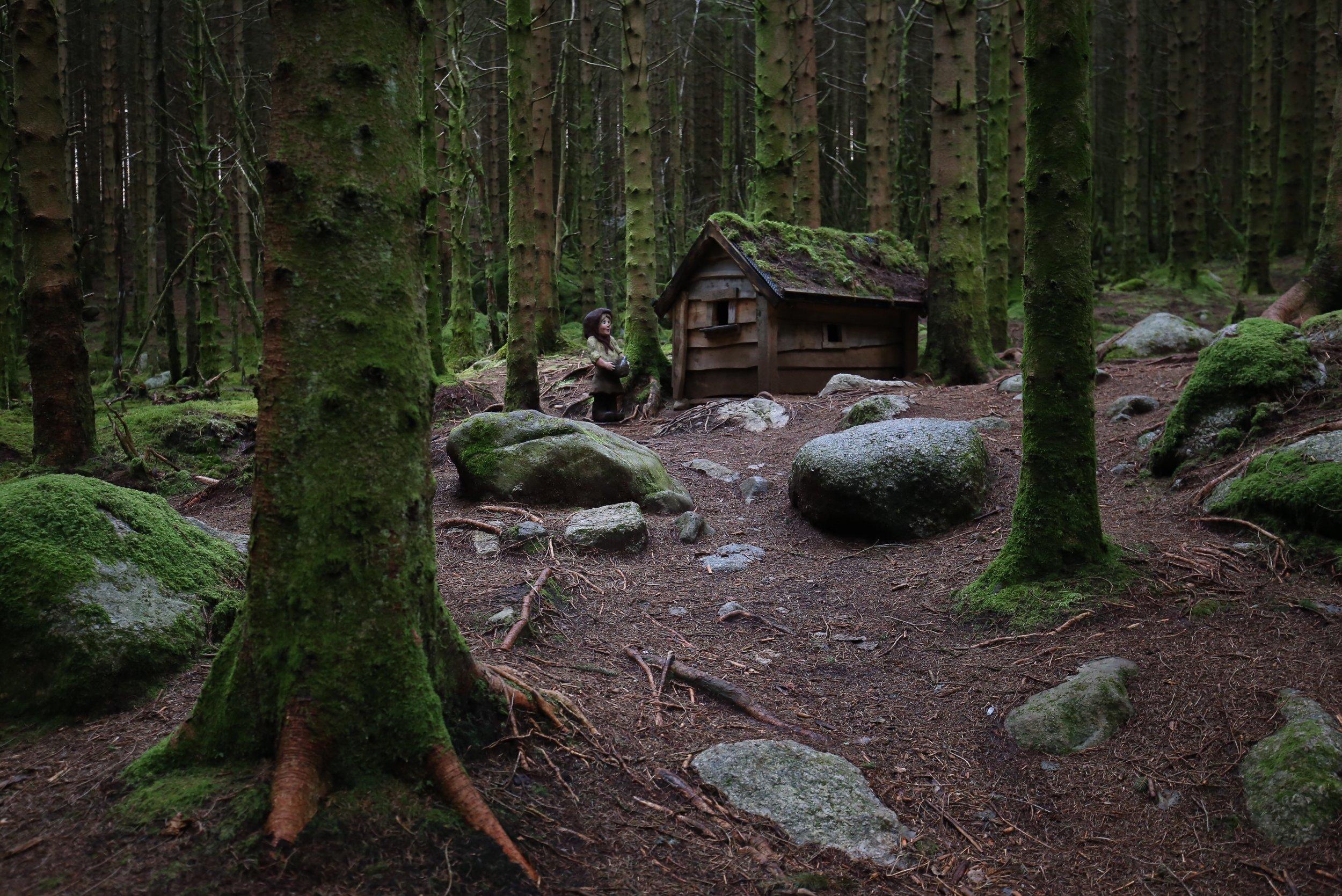fairytale forest ardal