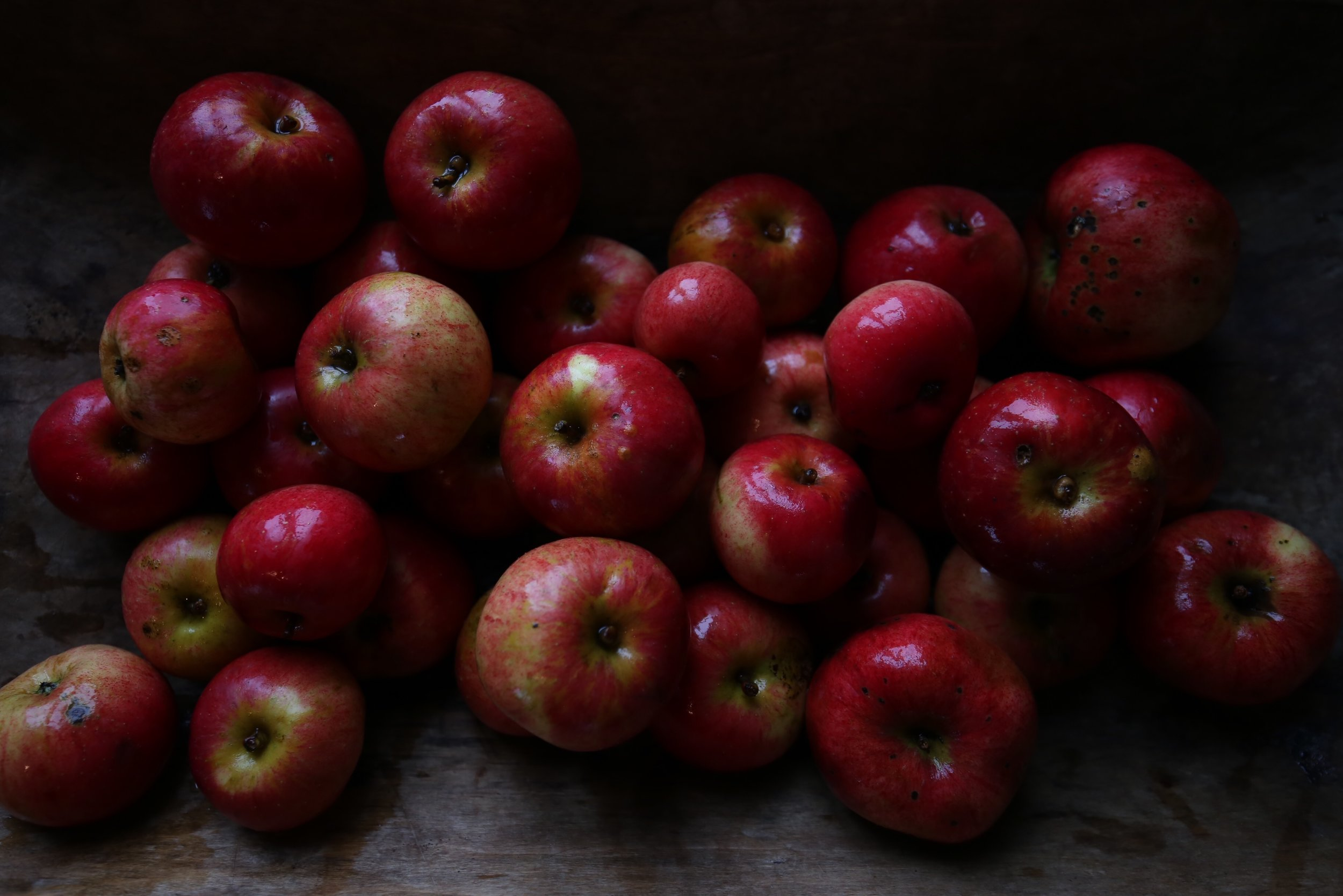 red Snow White apples