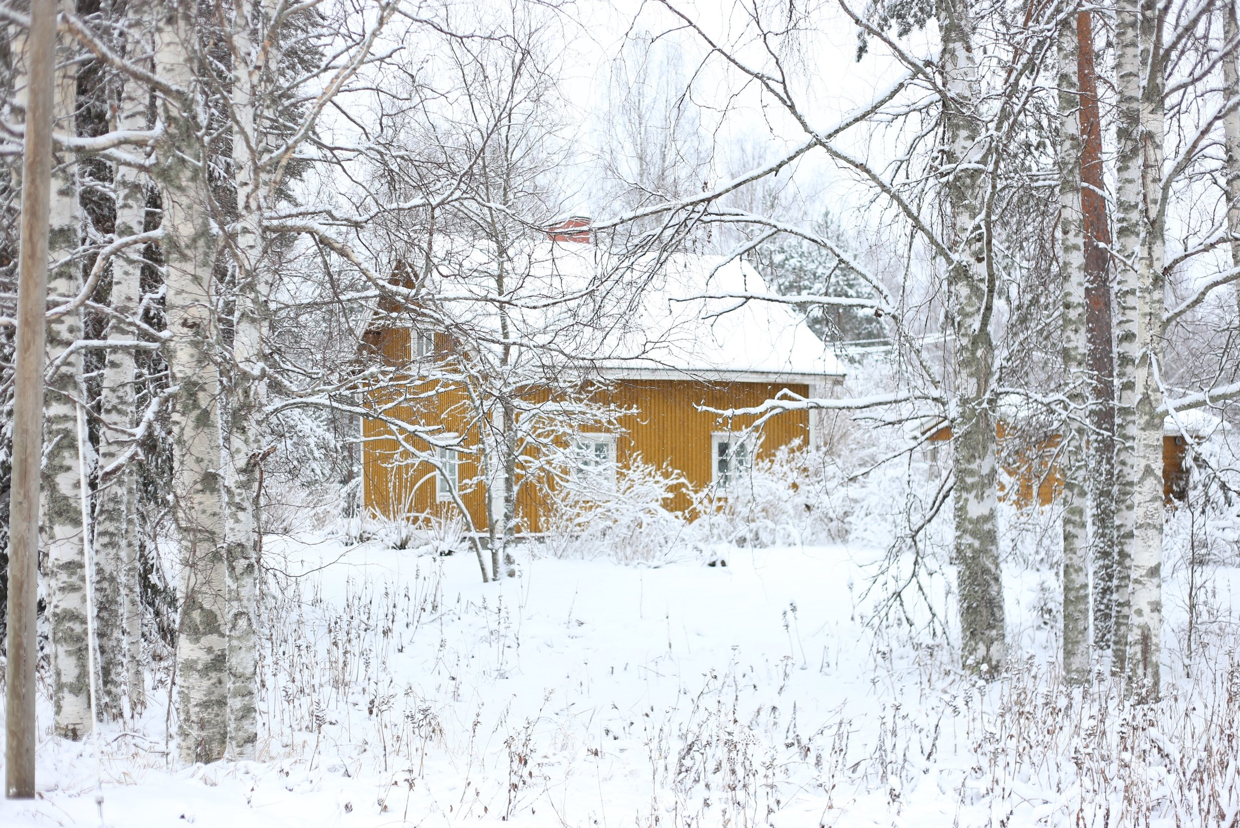 traditional Finnish house