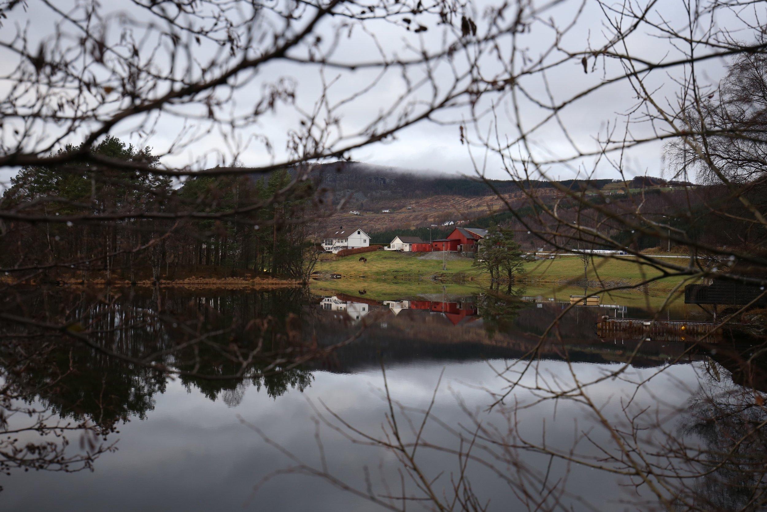 Norwegian farm by fjord