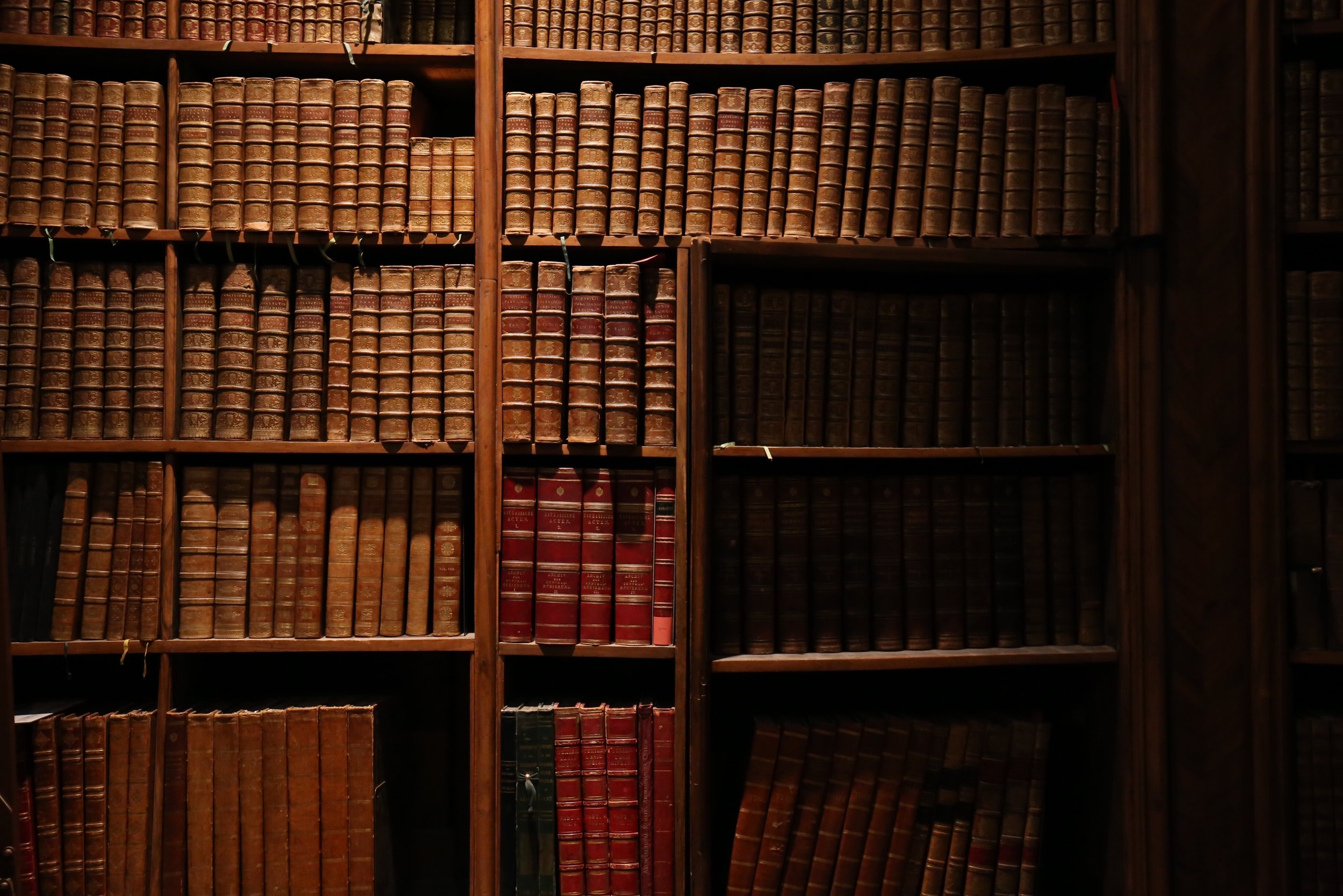 A secret doorway amongst the books of an ancient library.