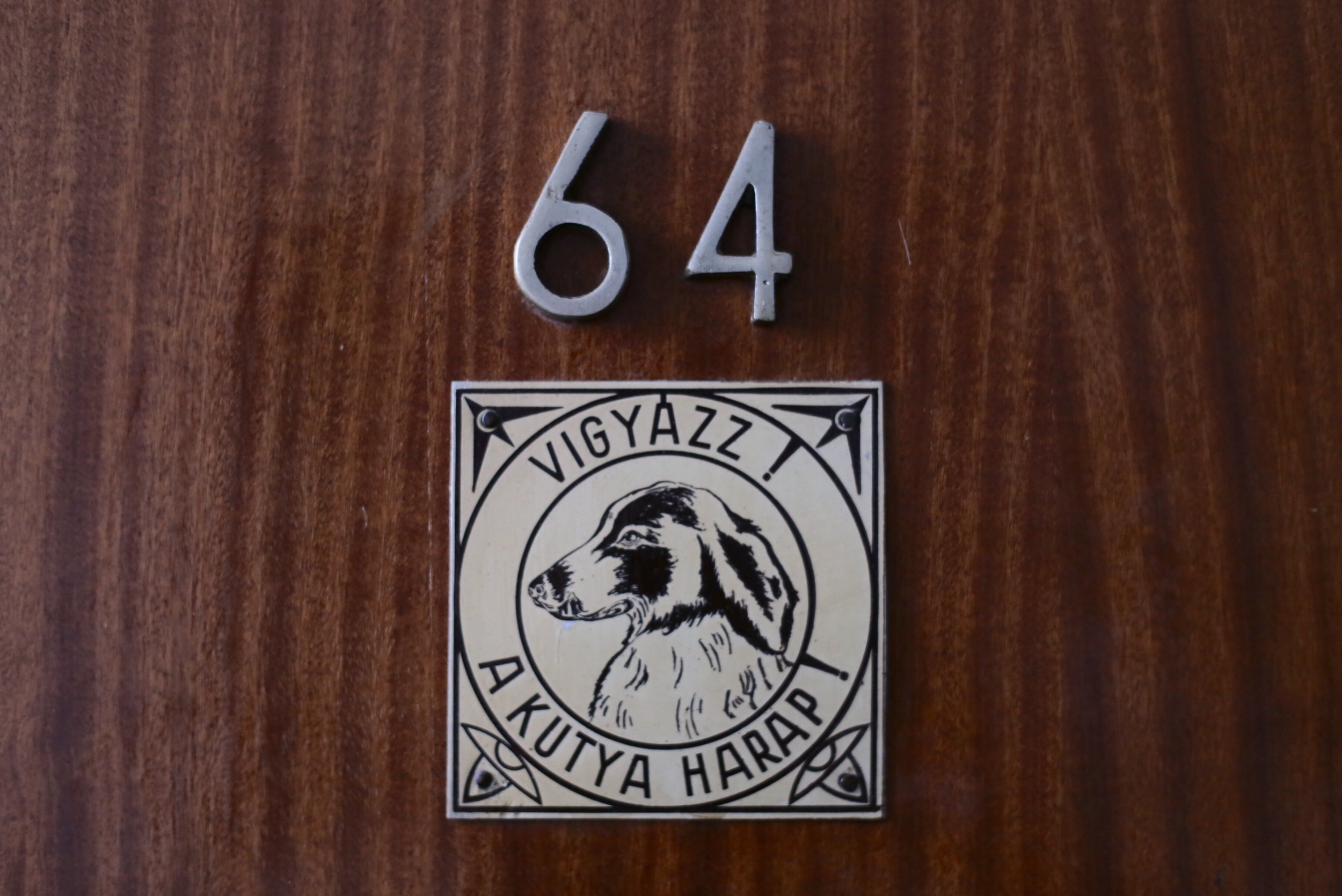 Door number 64 has a plaque with a dog engraving.