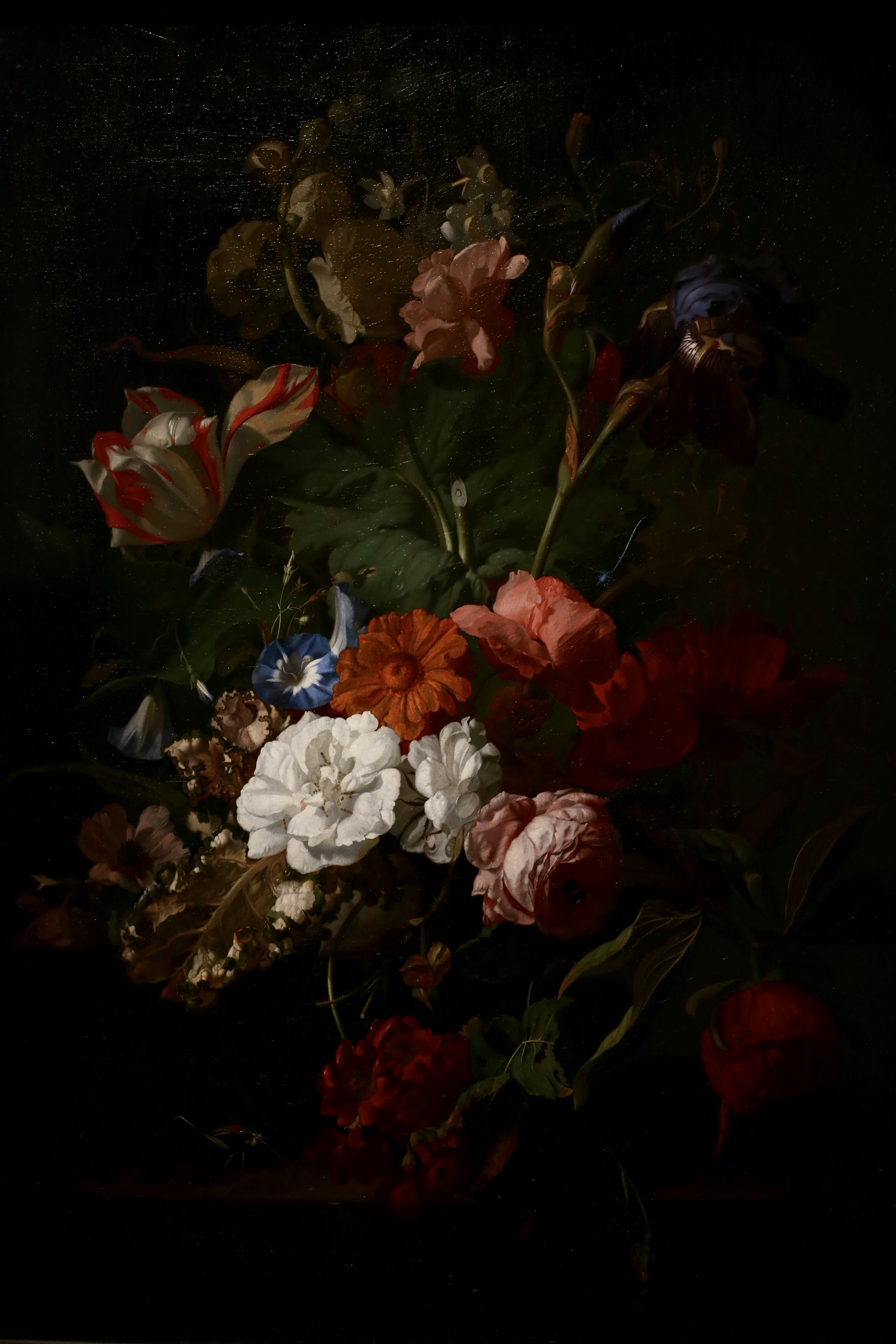 Vase of Flowers dutch painting by Rachel Ruysch