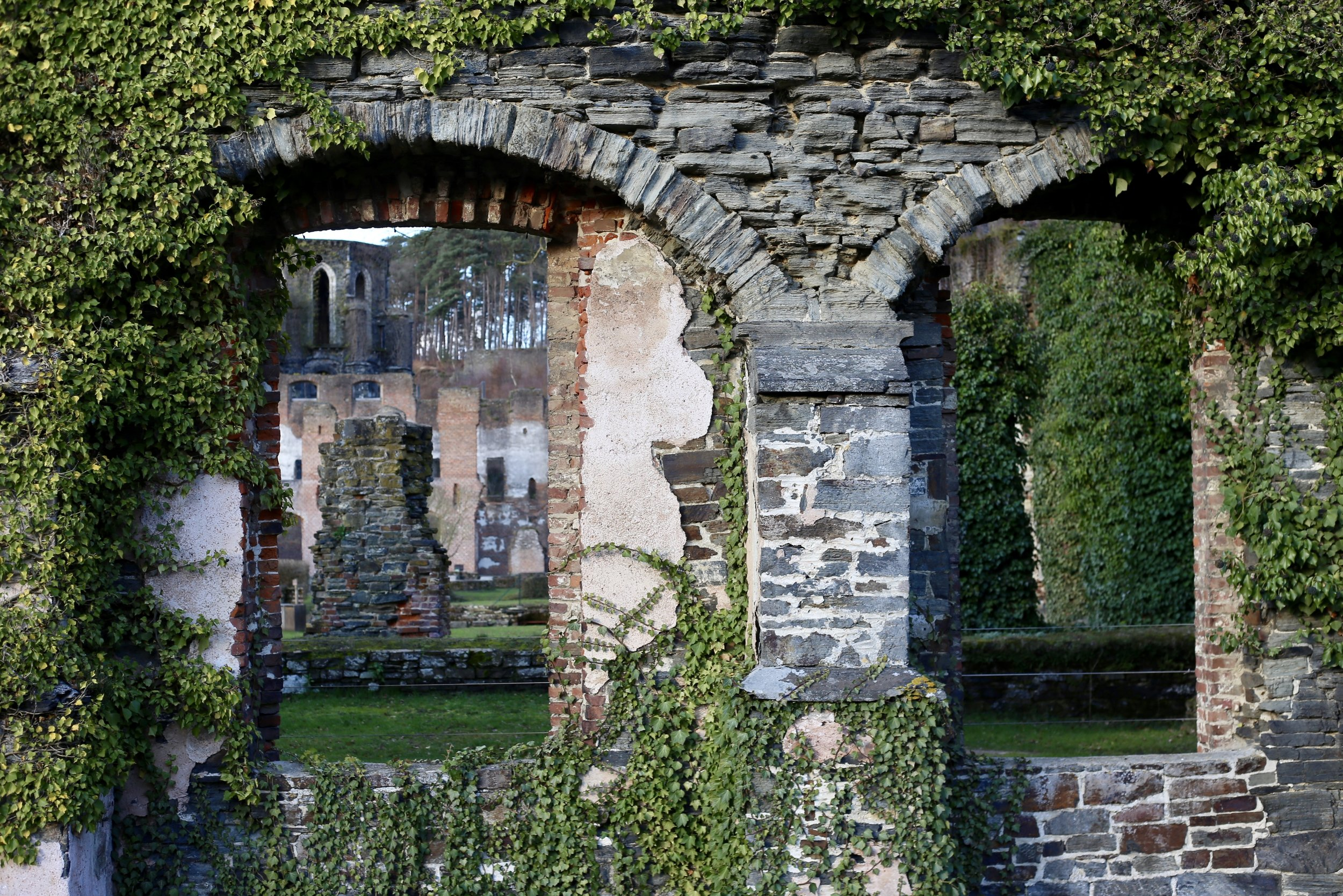 The ruined stone walls and ivy clad gardens of Abbaye de Villers.