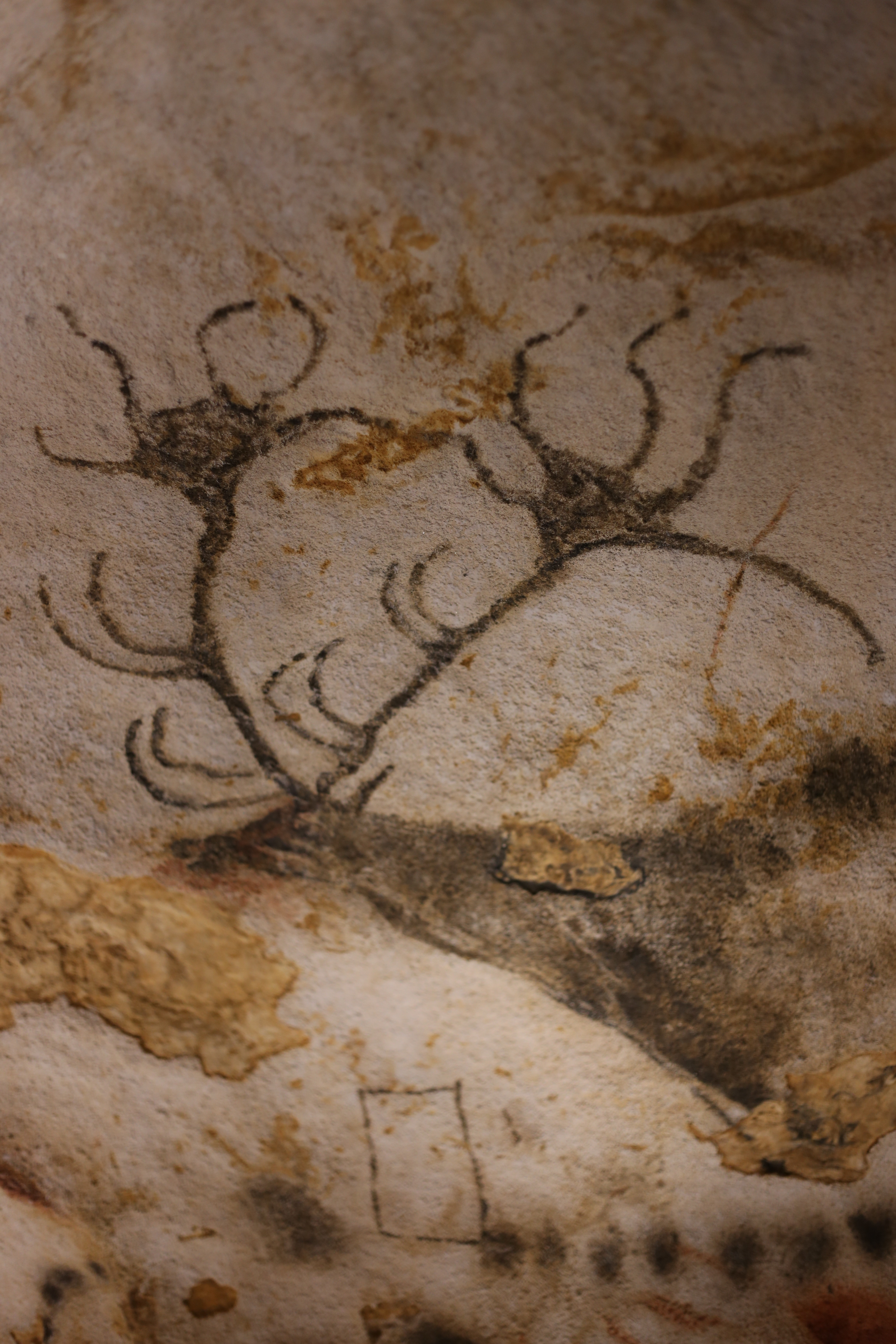 A gorgeous prehistoric painting of a many horned deer, Lascaux, also with square geometry.