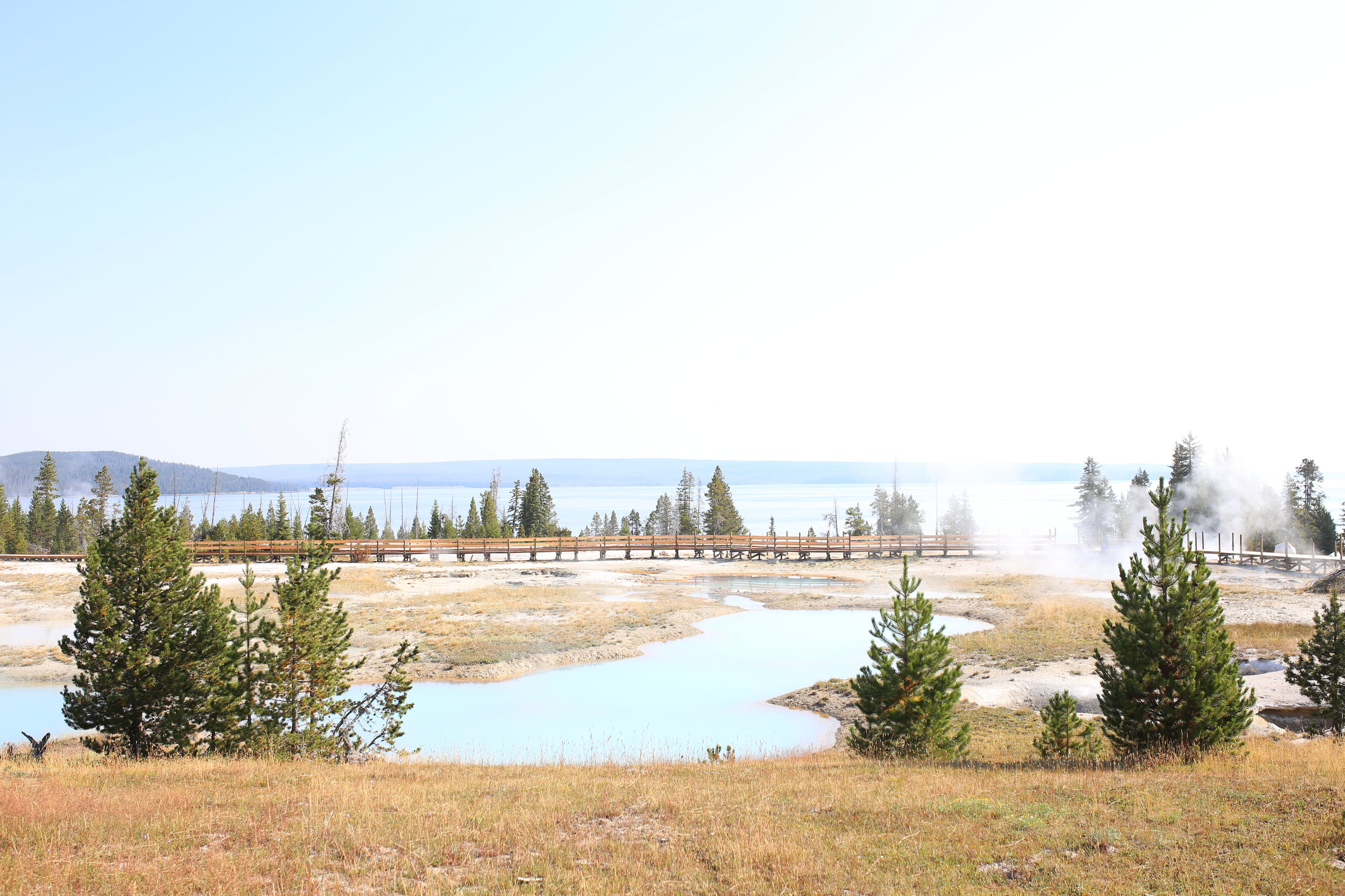 blue pools yellowstone park