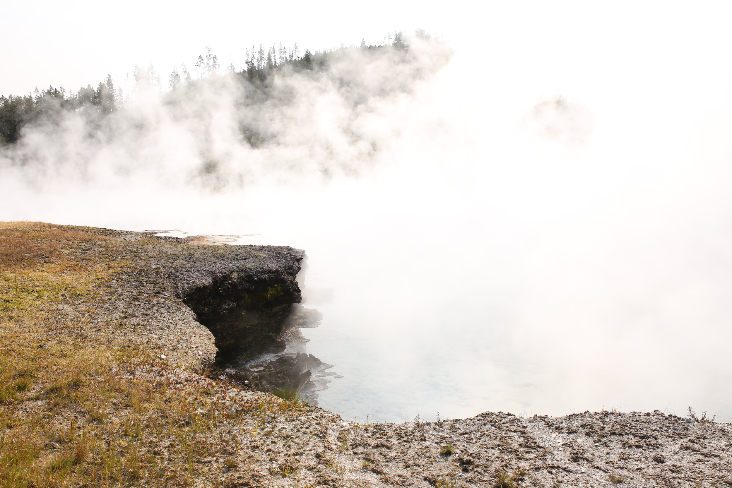 steam vents yellowstone park