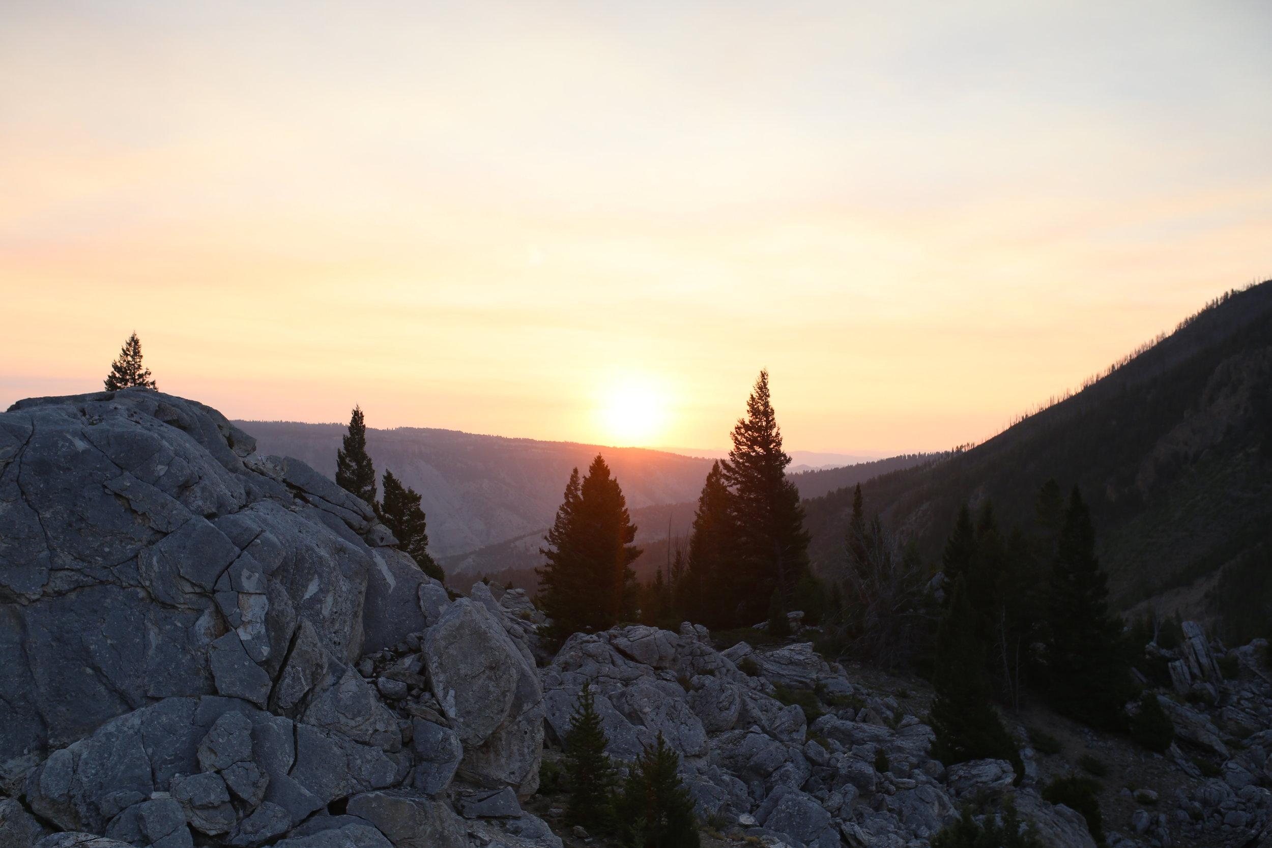 sunrise yellowstone national park