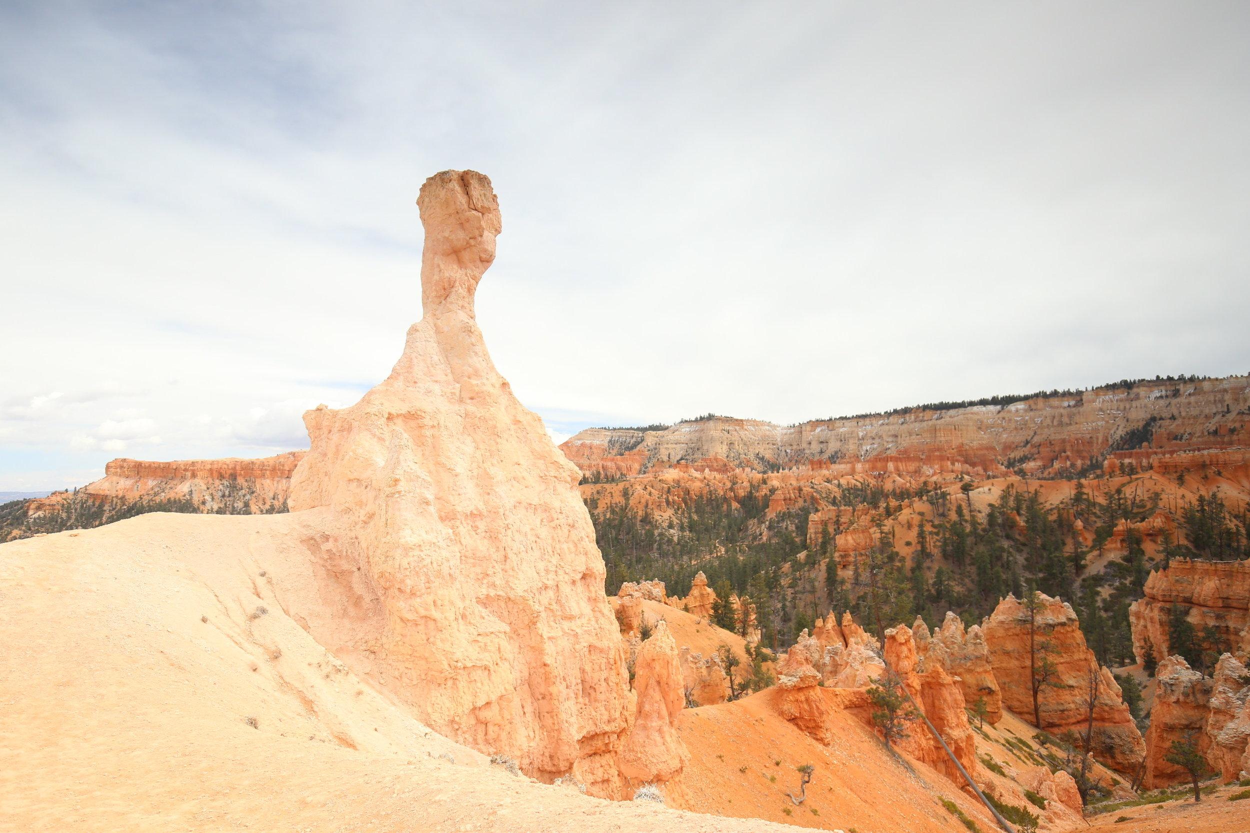 bryce-canyon-hoodoo