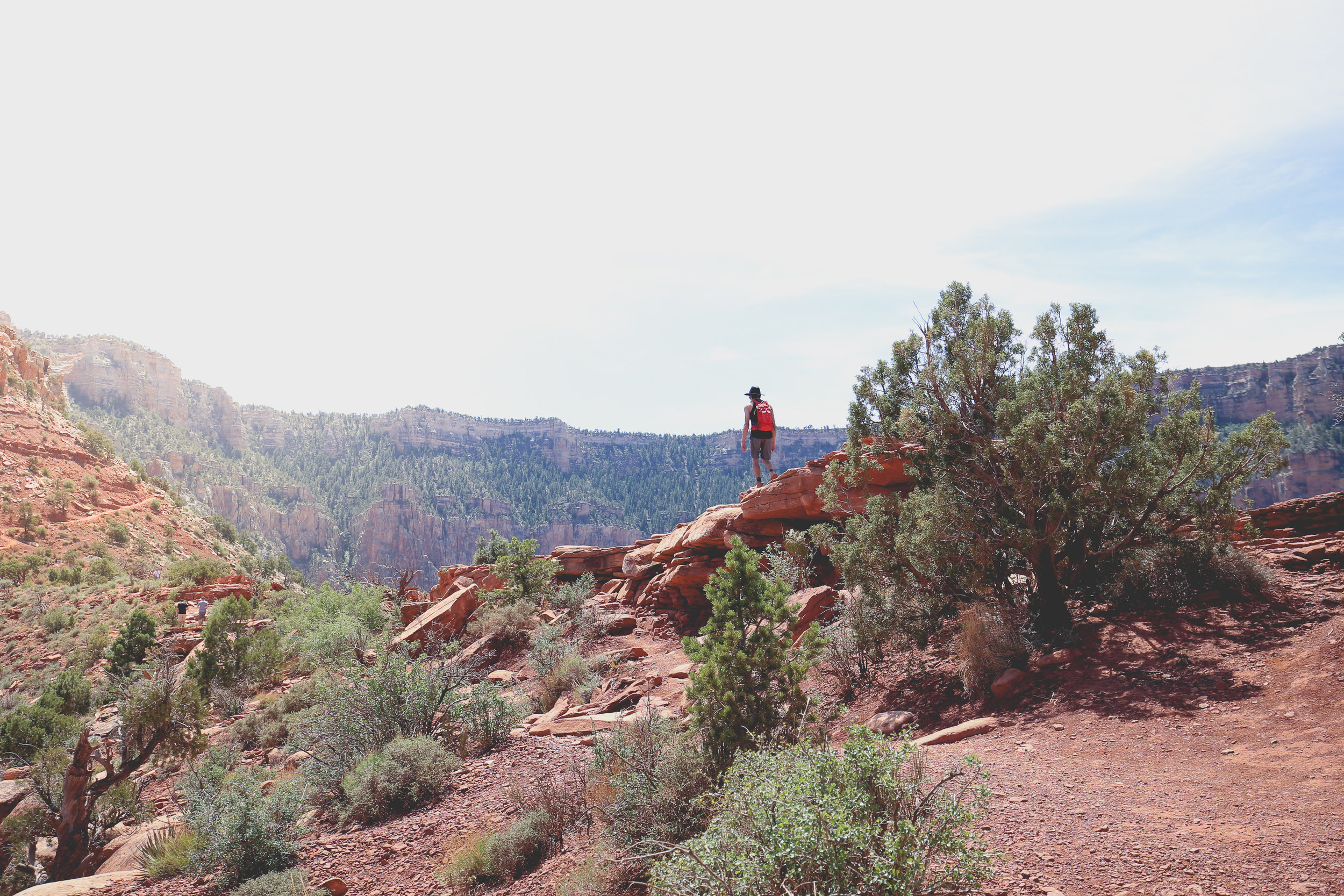 skeleton-point-grand-canyon