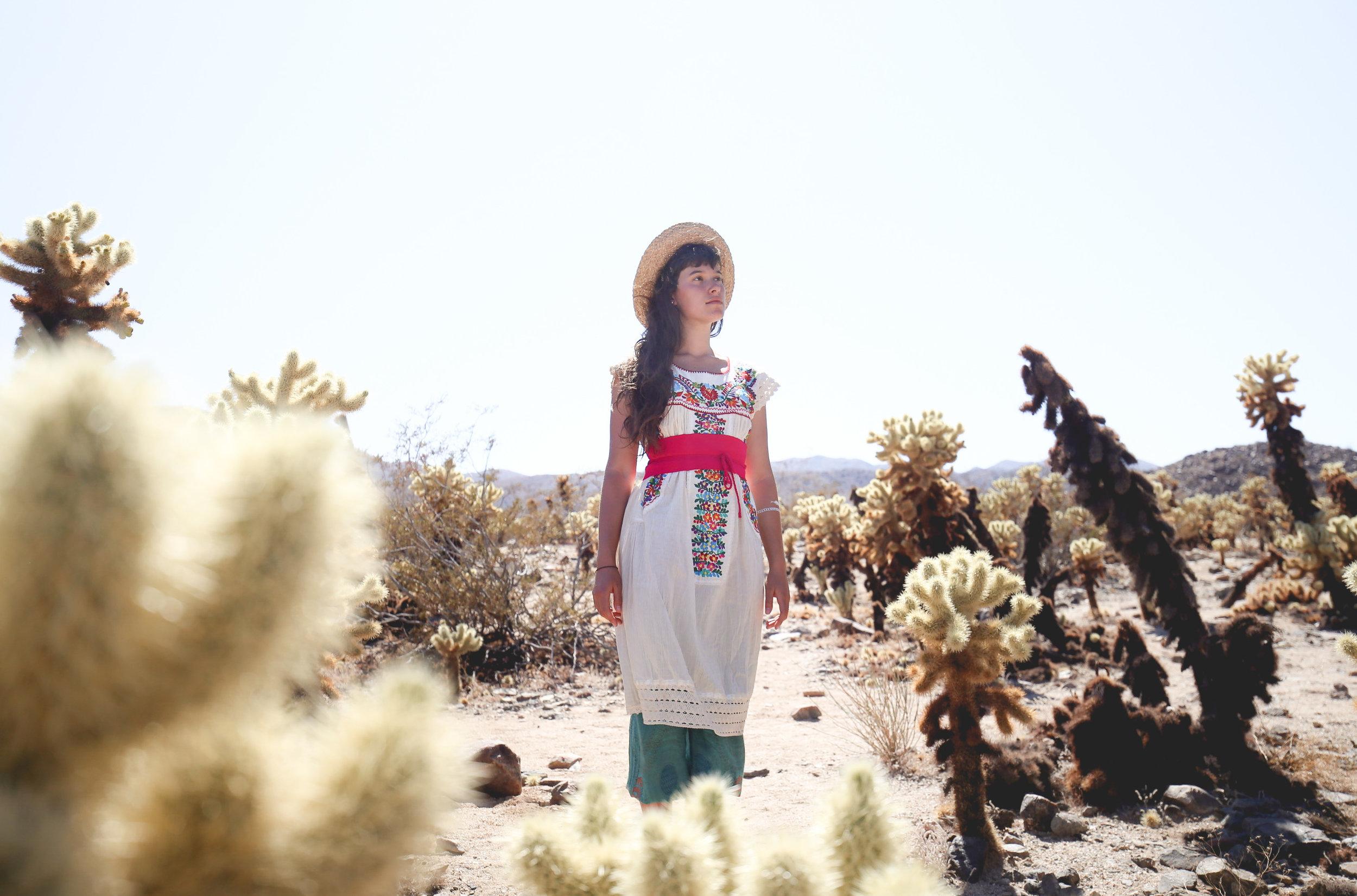 desert-goddess-cactus-garden