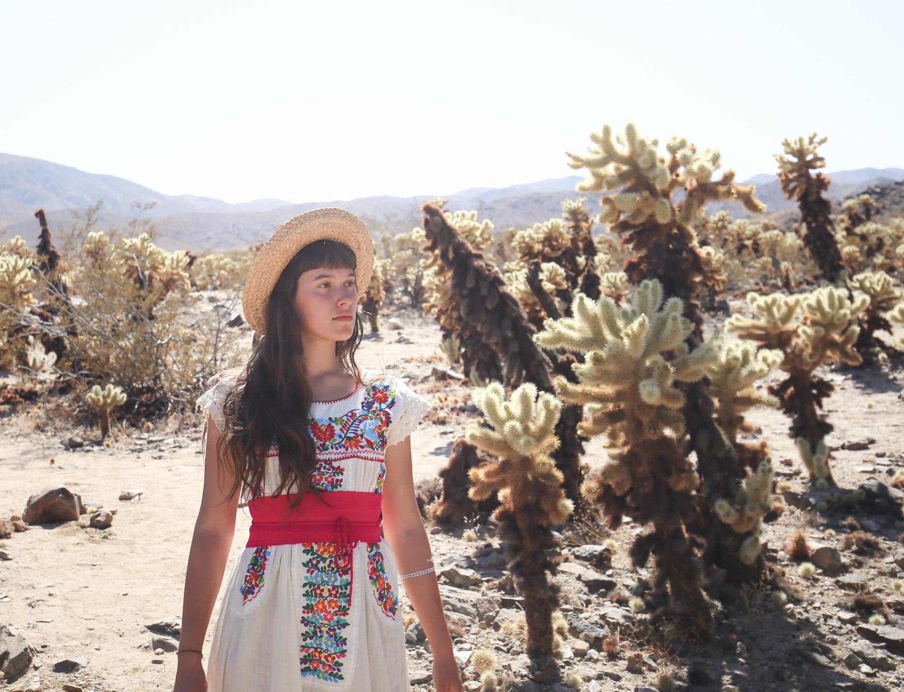in-the-cactus-garden