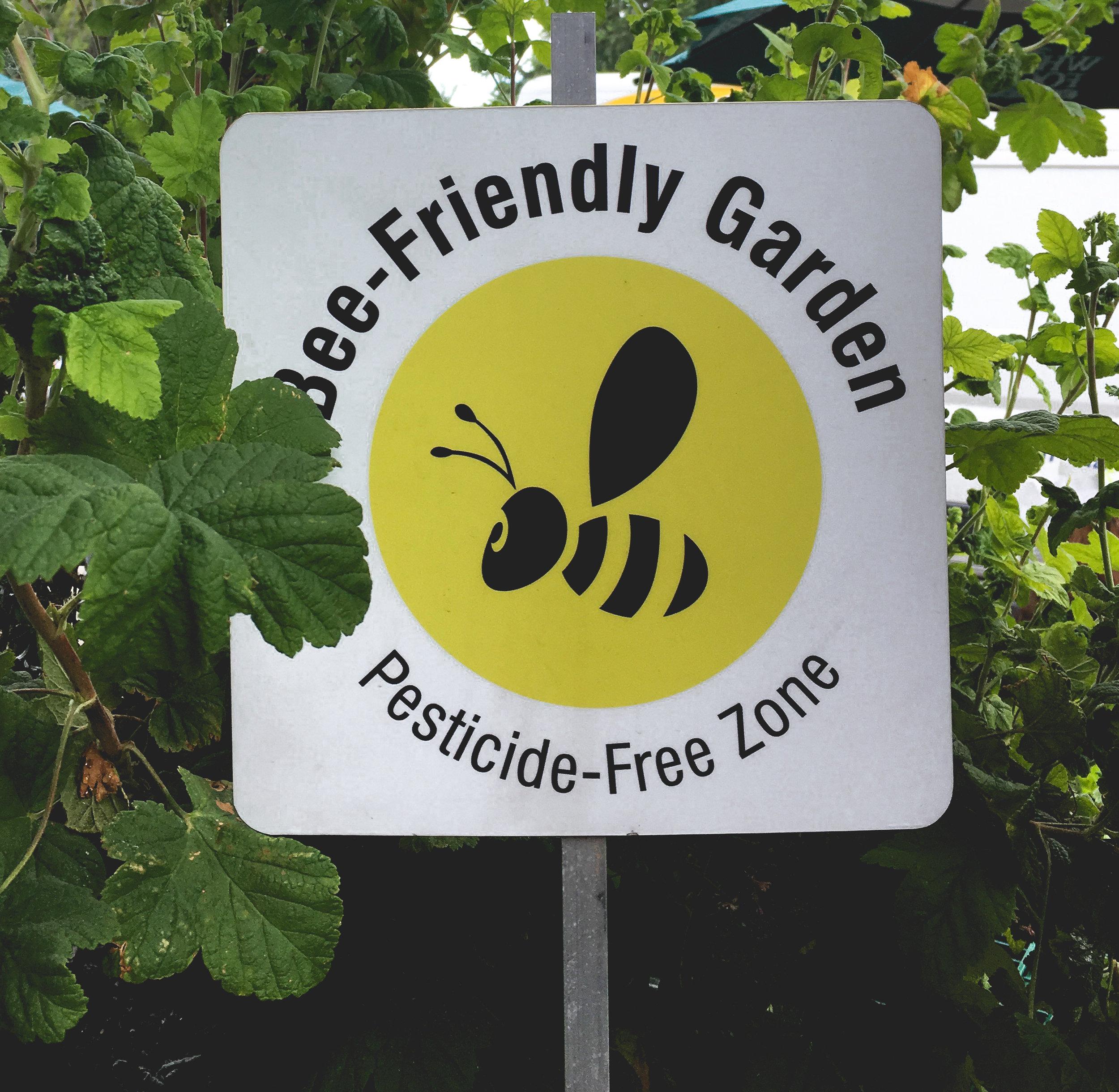 bee-friendly-garden-portland