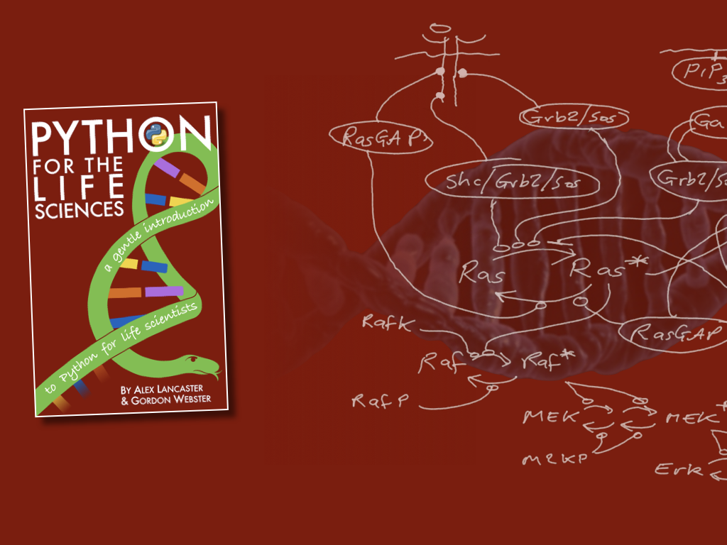 Python-Book-Banners.005.png