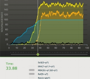 Big-Simulation-crop.jpg