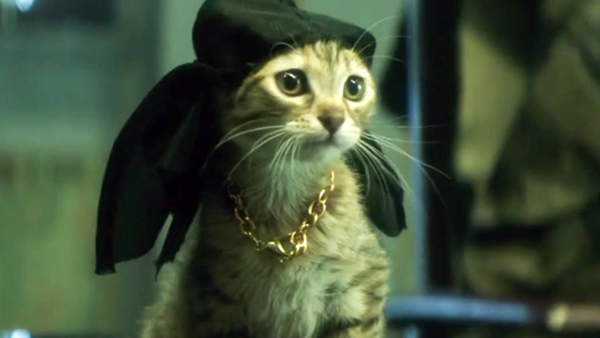 Keanu is the true star of the movie.