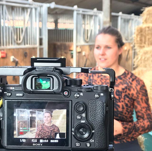 Shooting today a #corporateidentity #film for the most beautiful women on earth❤️ (pssst, it's my wife). #buissnesswoman #filmmaking #a7riii #sonya7riii @melissawesselsberkhof