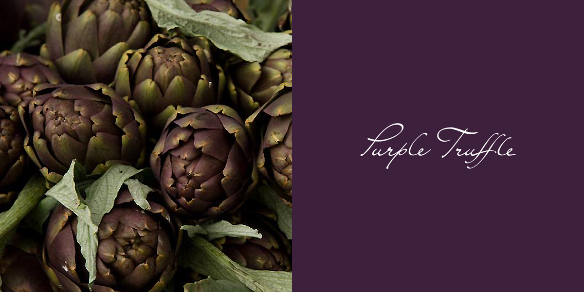 purple-truffle-logo-galle-design.jpg