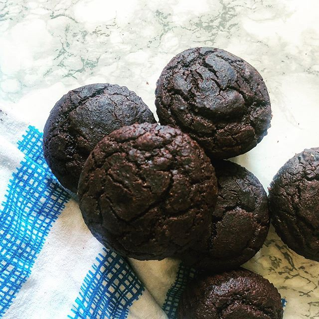 Double chocolate protein muffins! Back on the baking train and experimenting with @seekfood flour to make these #sustainable, #glutenfree, #dairyfree, muffins!