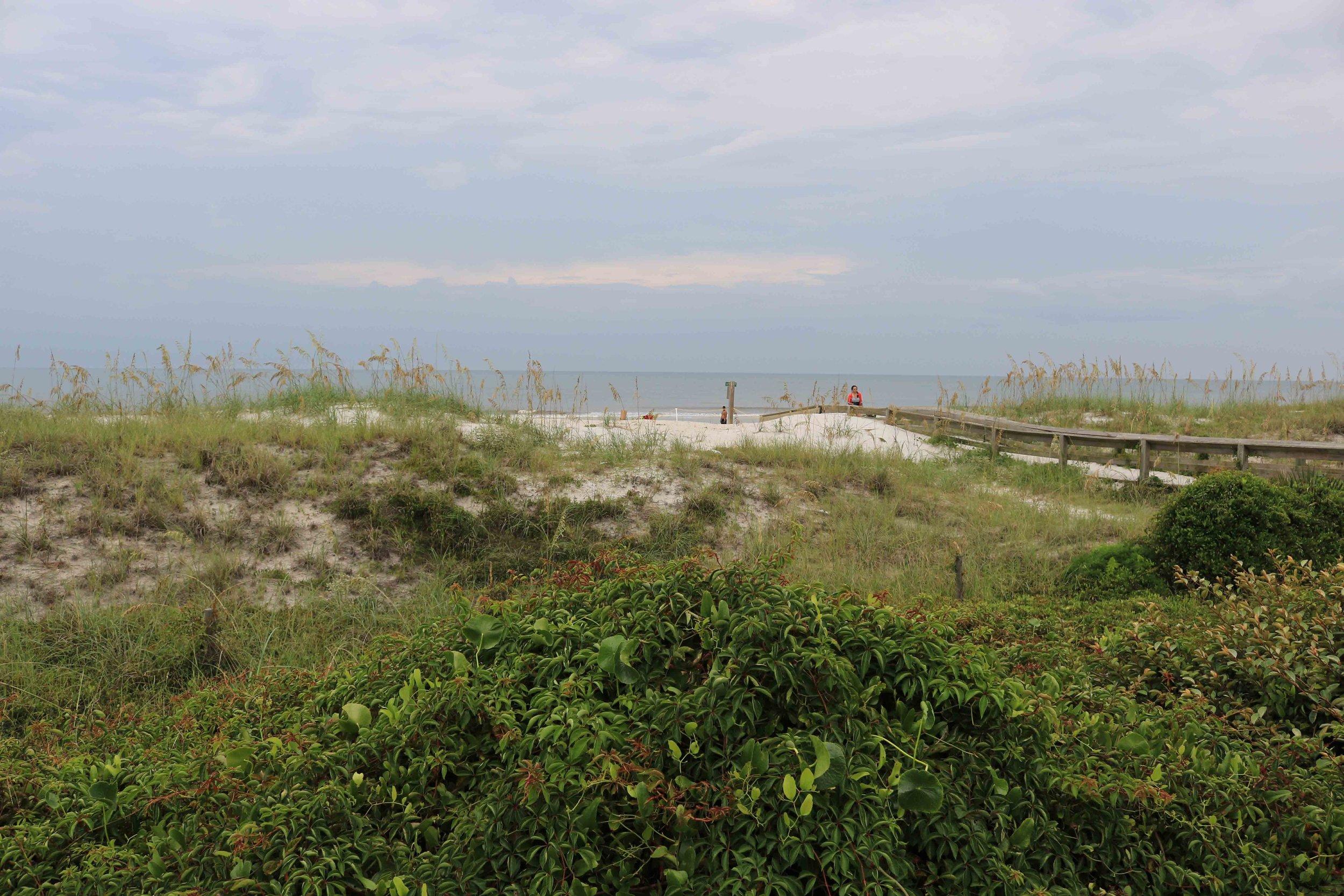 Lemon Bar Atlantic Ocean View
