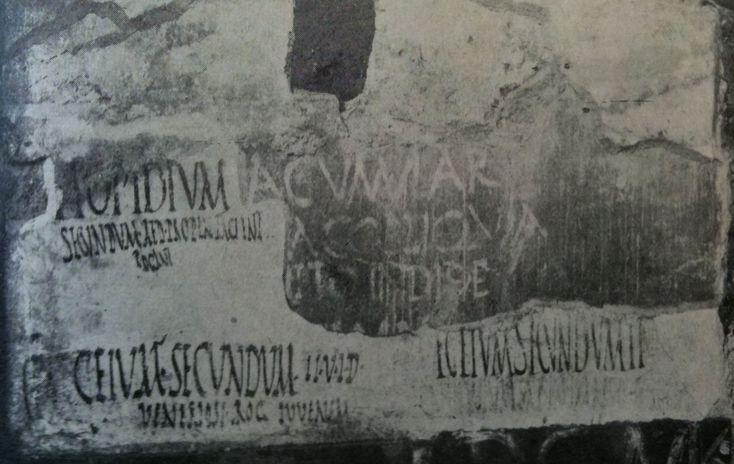 Bottom left corner, CIL IV.7791:  Ceium Secundum IIv(irum) i(ure) d(icundo) / Veneriosi rog(ant) iuvenem.  Photo: Clauss / Slaby.