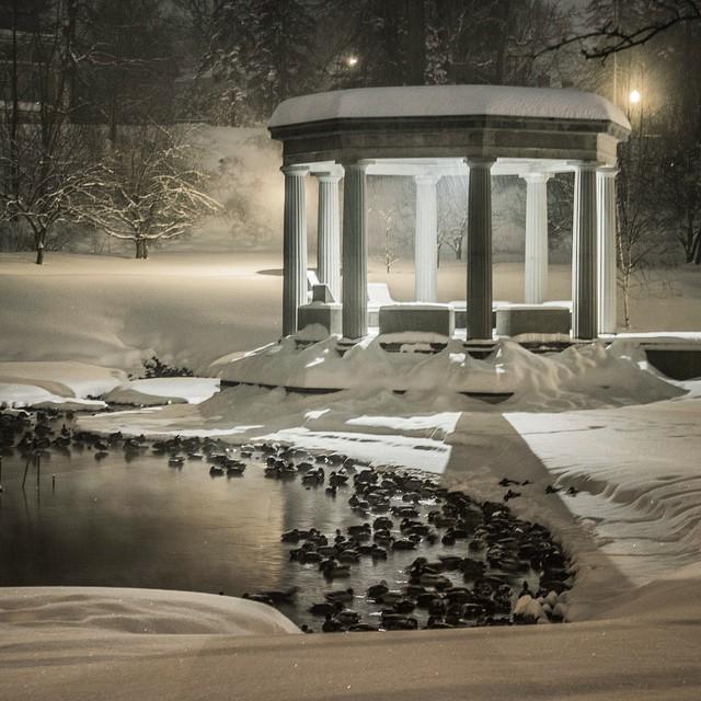 #Saratoga #ExploreSaratoga #snowstorm #snow #pandora #longexposure #photography #nightphotography #lfis #magic