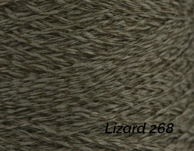 Lizard 268.jpg