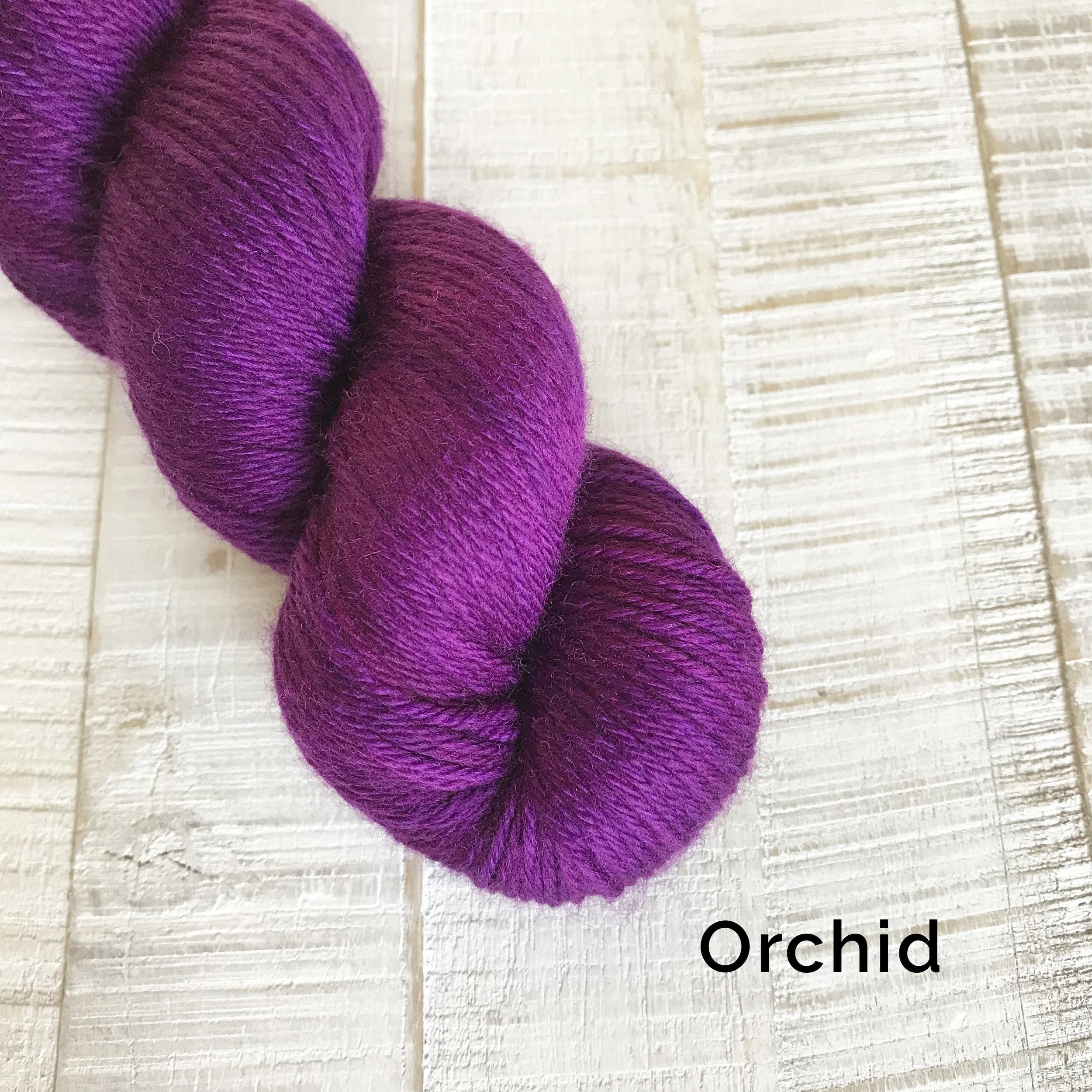 Orchid_all.jpg