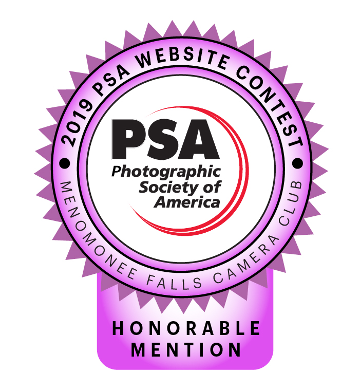 Award - PSA Website Contest 2019