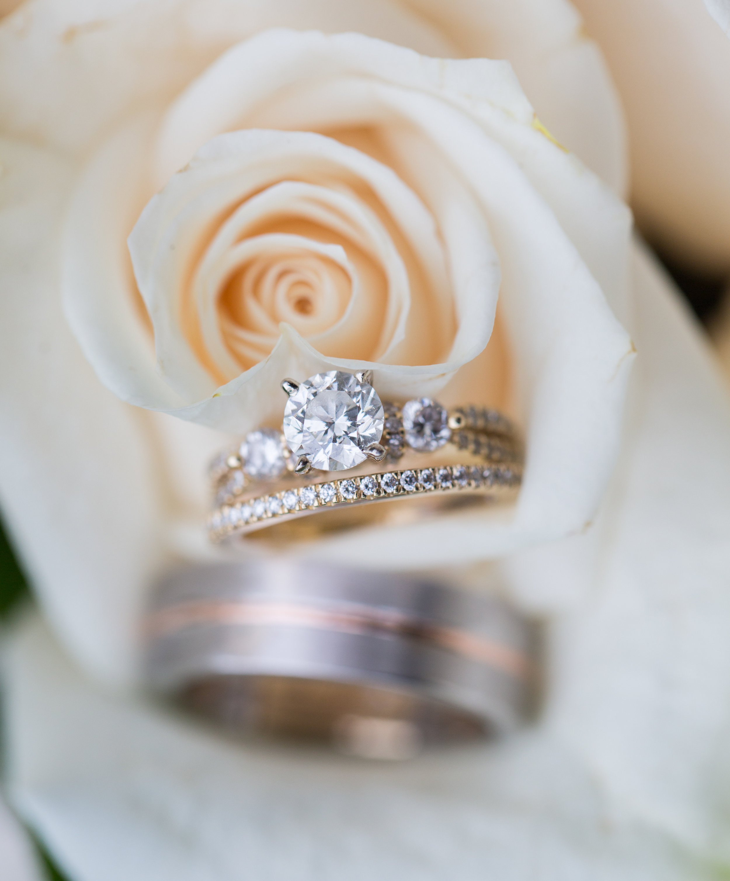 Wedding rings placed in one of the white roses in the bridal bouquet.