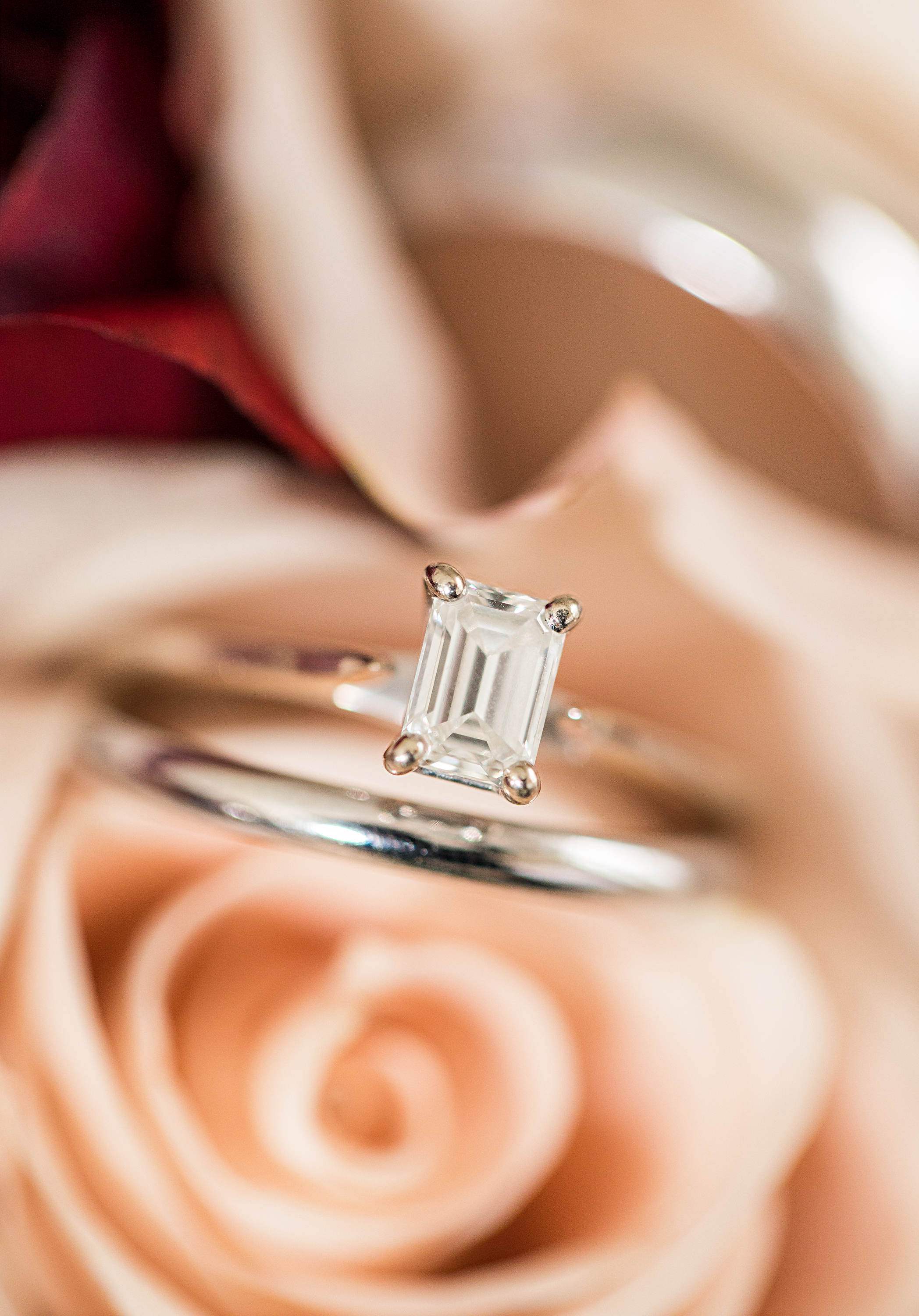 White gold wedding rings photographed inside the bride's flower bouquet of soft pink roses and lillies.