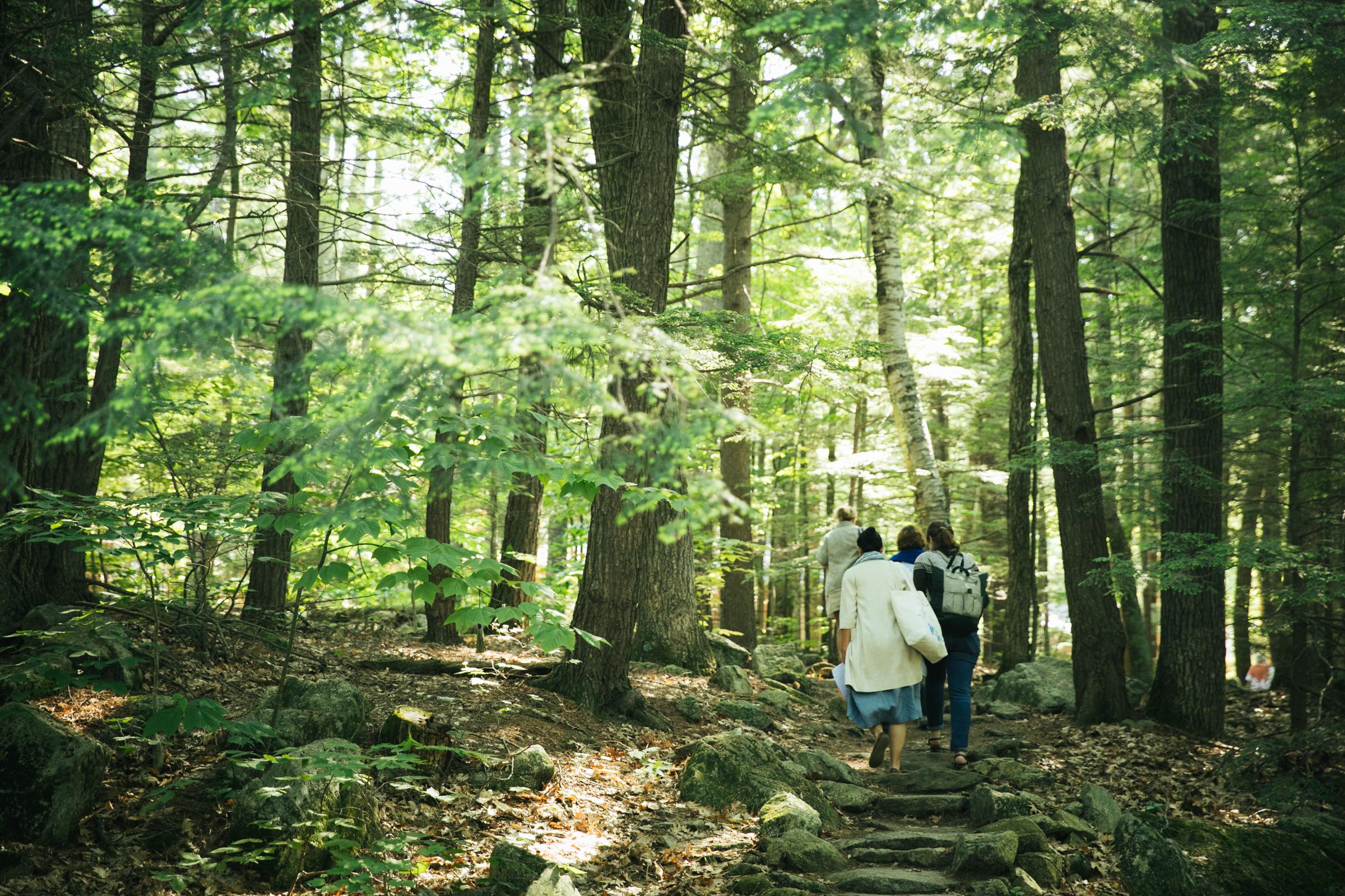Squam Art Workshops —Participants in the woods