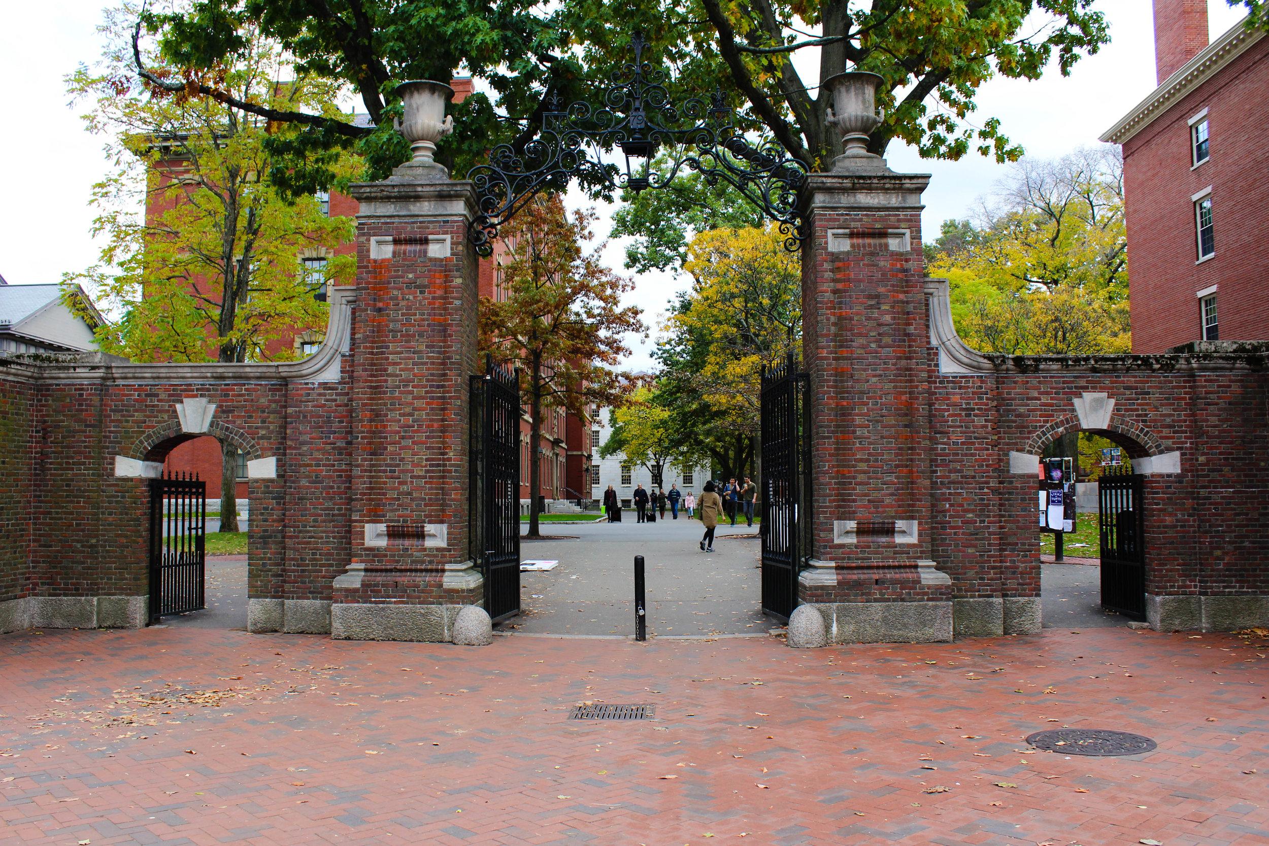Harvard - Cambridge 3.0.jpg