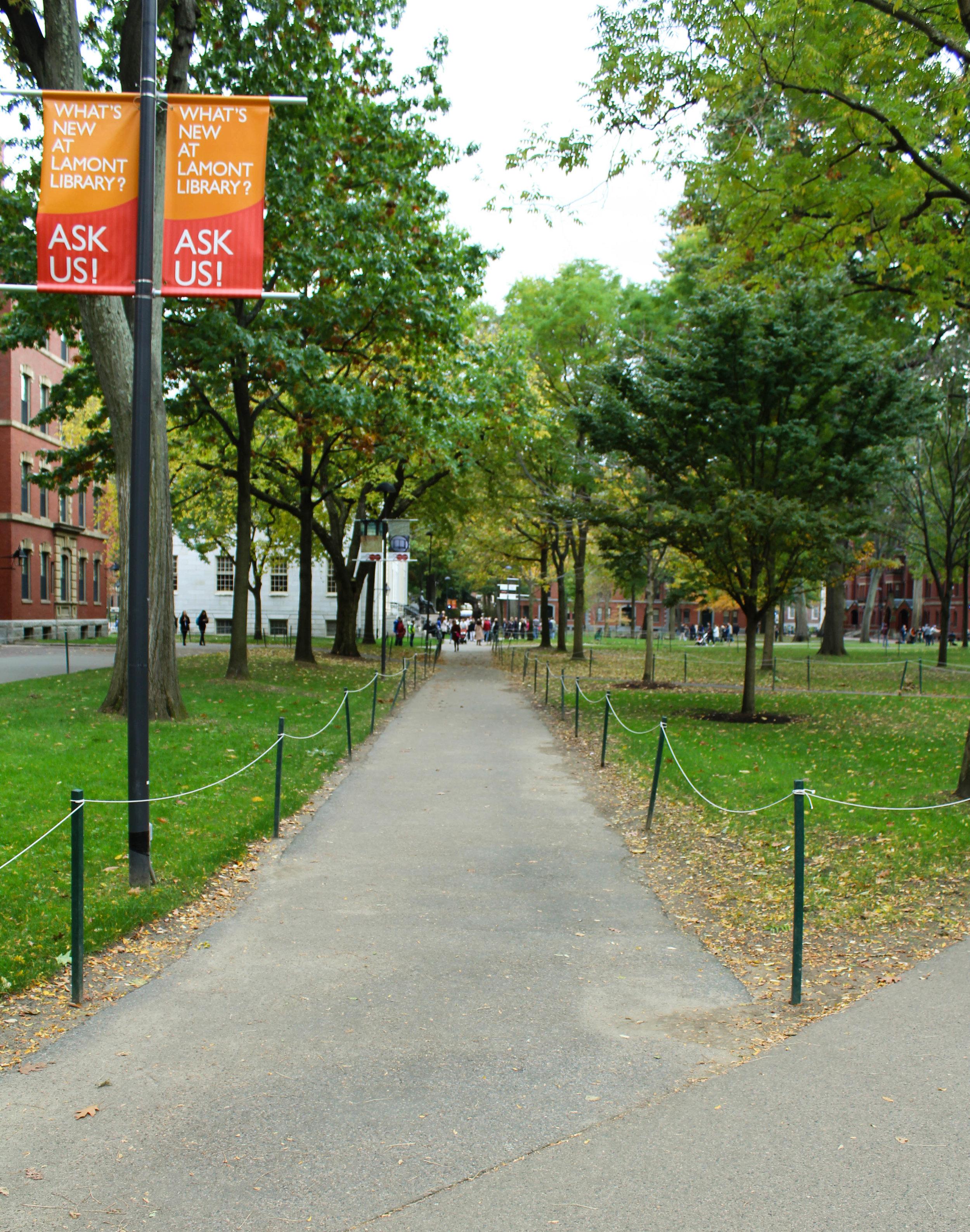 Harvard - Cambridge 4.0.jpg