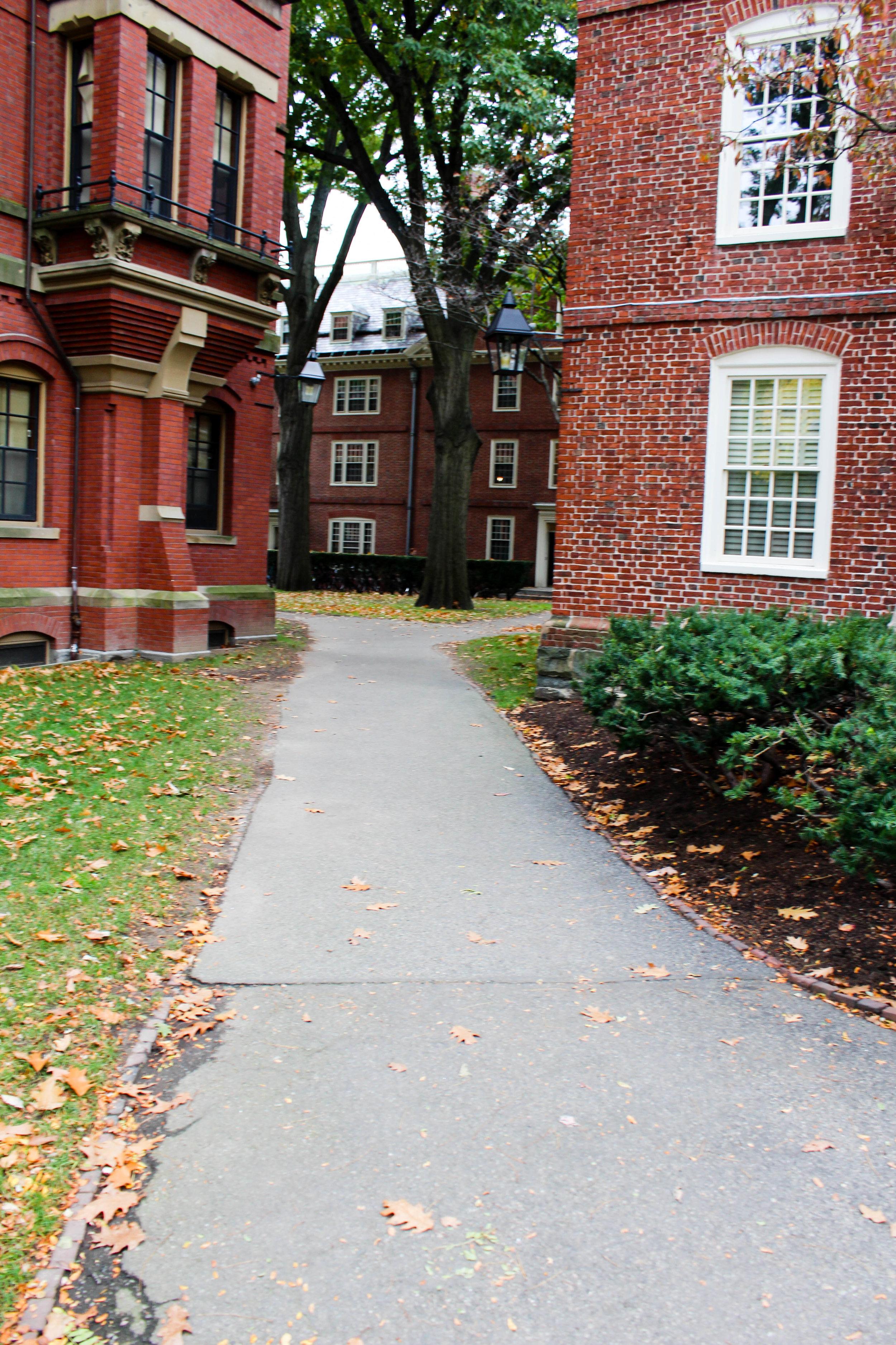 Harvard - Cambridge 8.0.jpg