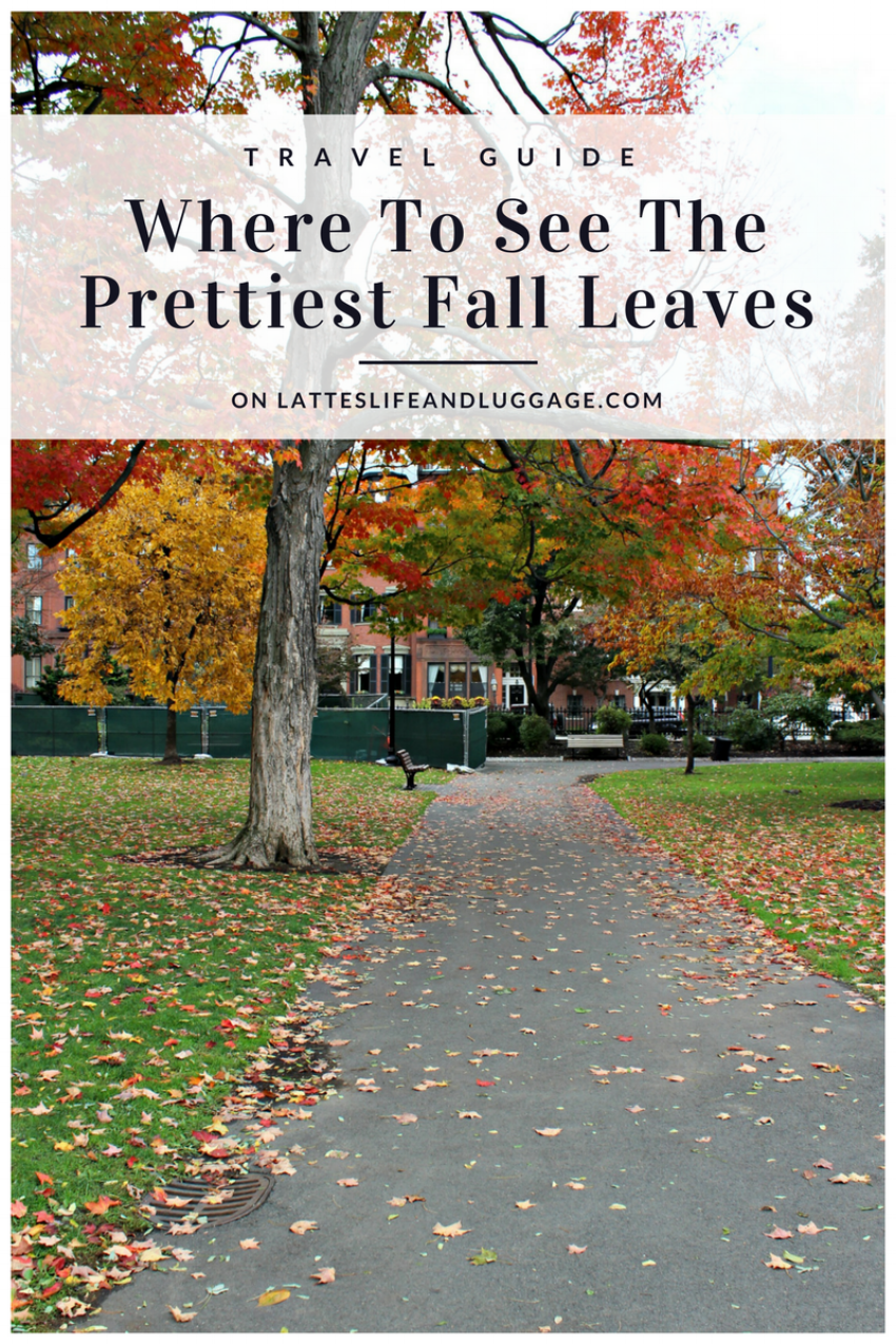 Where to See the Prettiest Fall Leaves.png