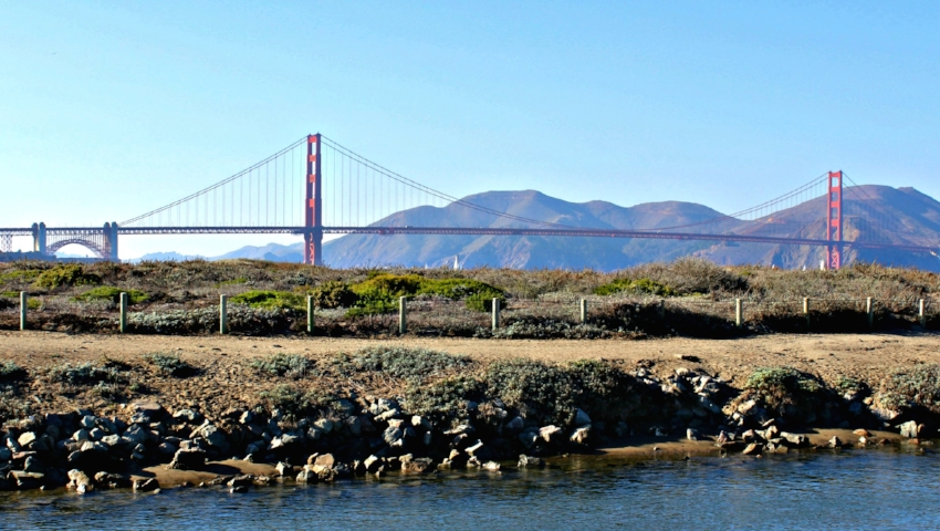 golden gate bridge 1.0.jpg