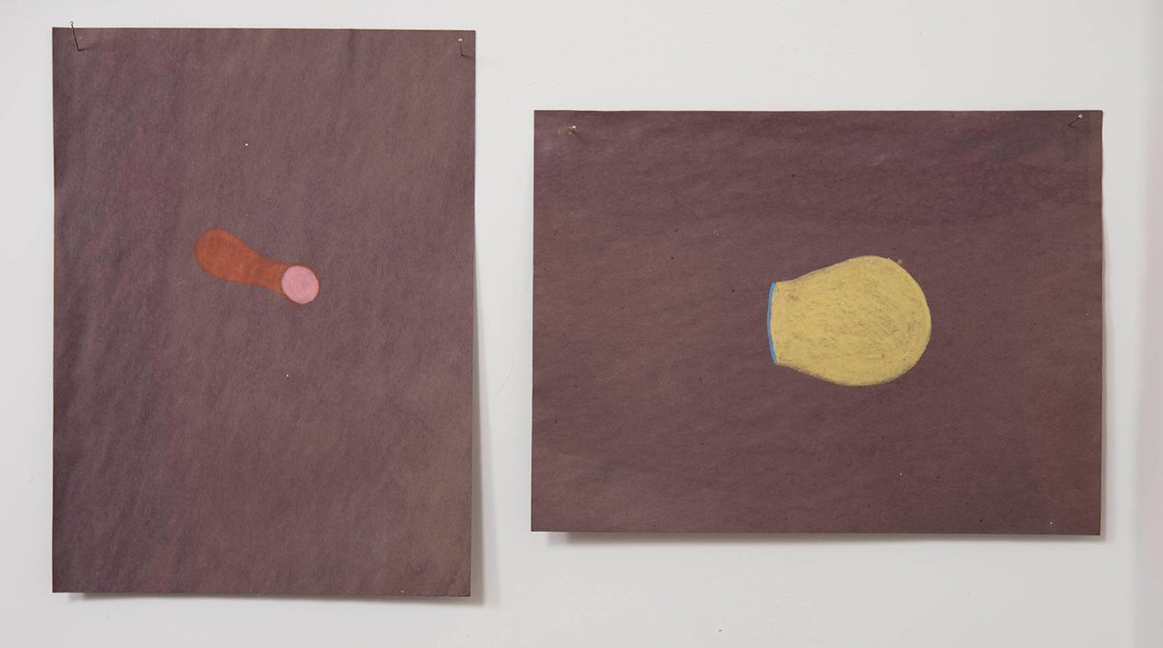 untitled oil pastel on paper  dimensions variable  2009