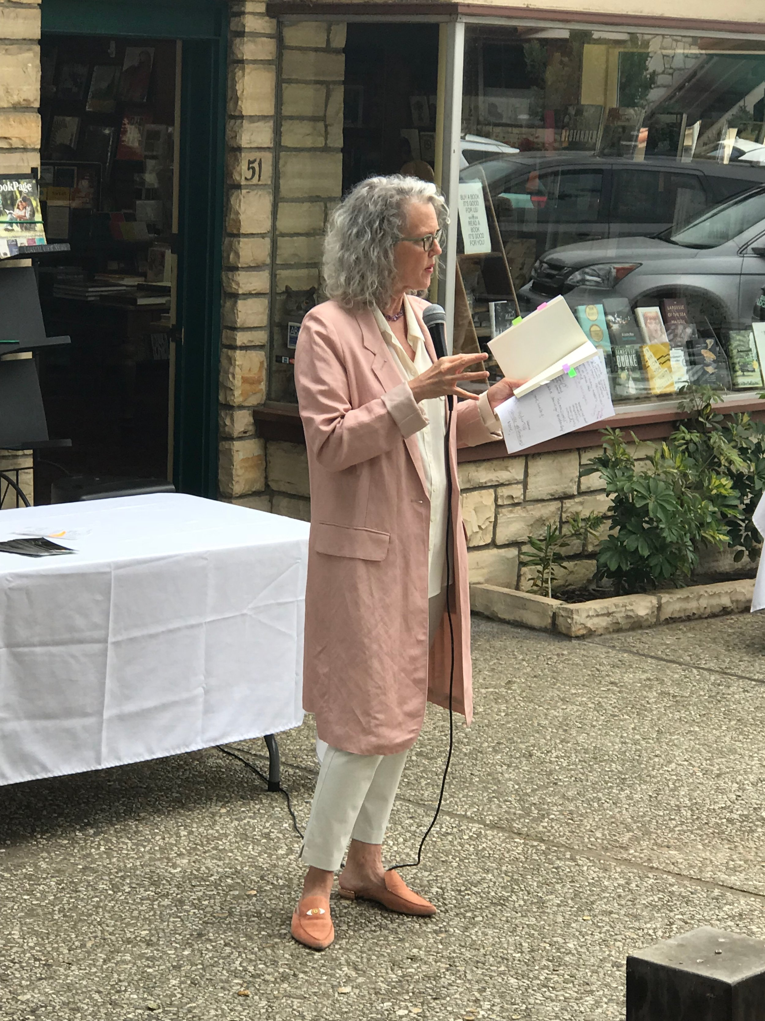 Stacy Pulice Telcote Book Store Talk