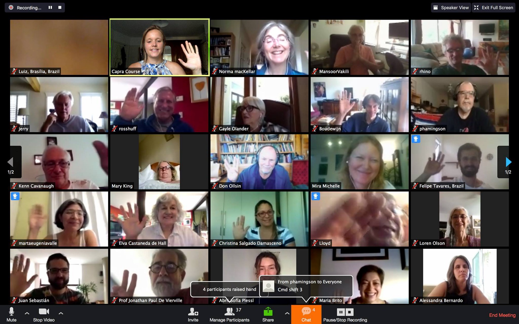 Screenshot from our Global Online Alumni Zoom call.