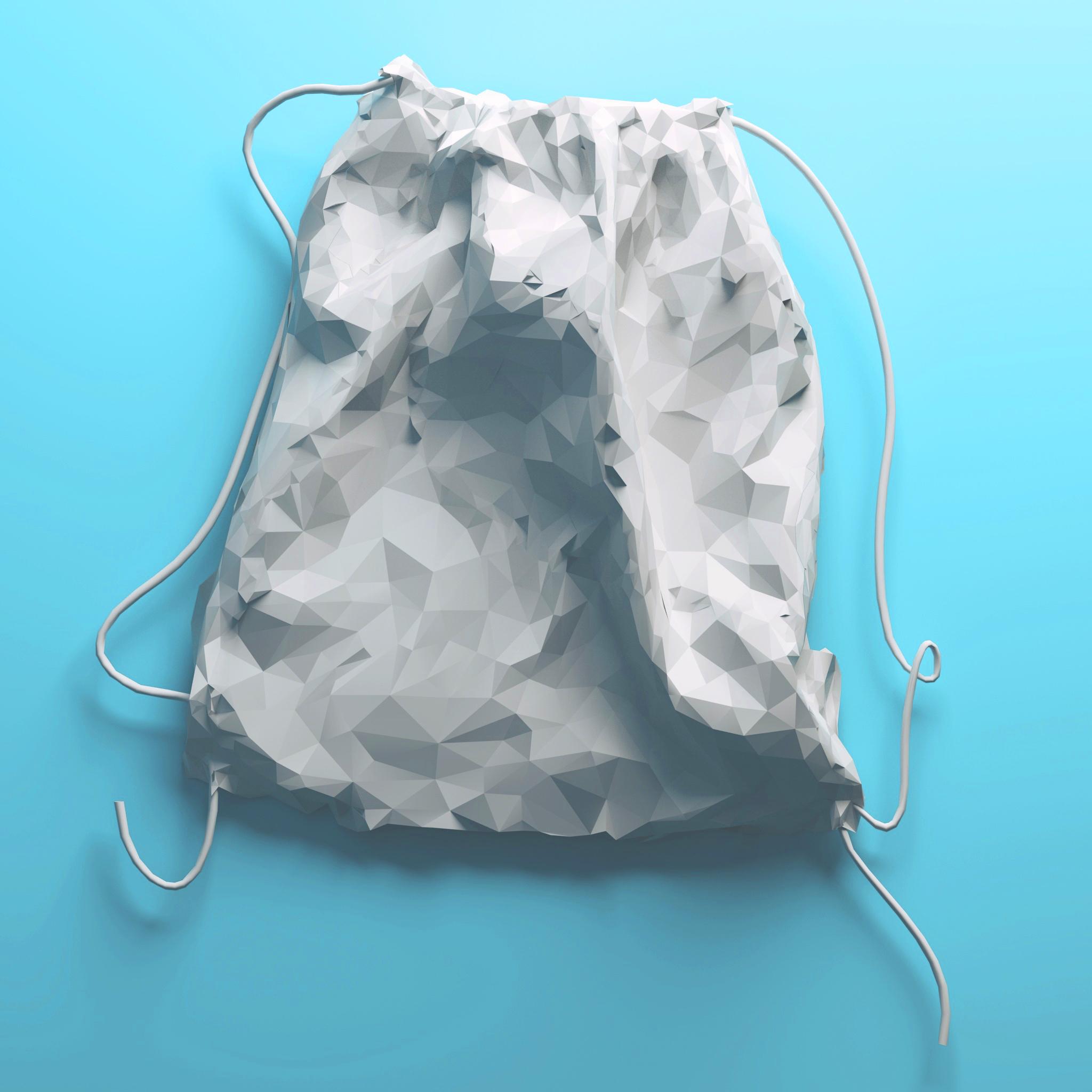 dust_bag_low_poly (1).jpg