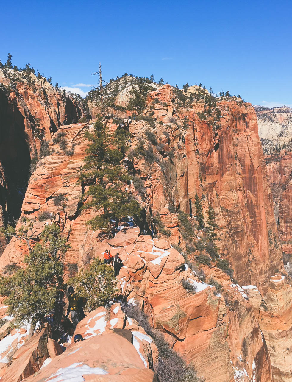 Scout's Overlook from Angel's Landing