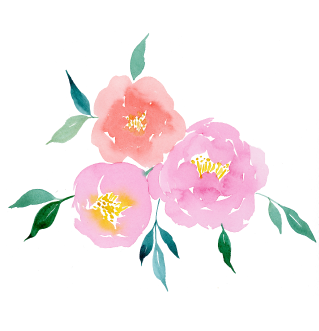 Anemone-title-page-2.png