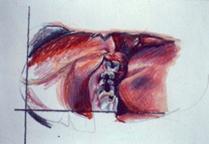 dental-case-1-illustration,prisma.png