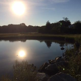 sun reflection lake.JPG