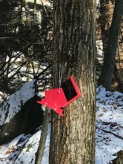 broken red feeder.JPG