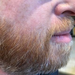 Dan beard.JPG