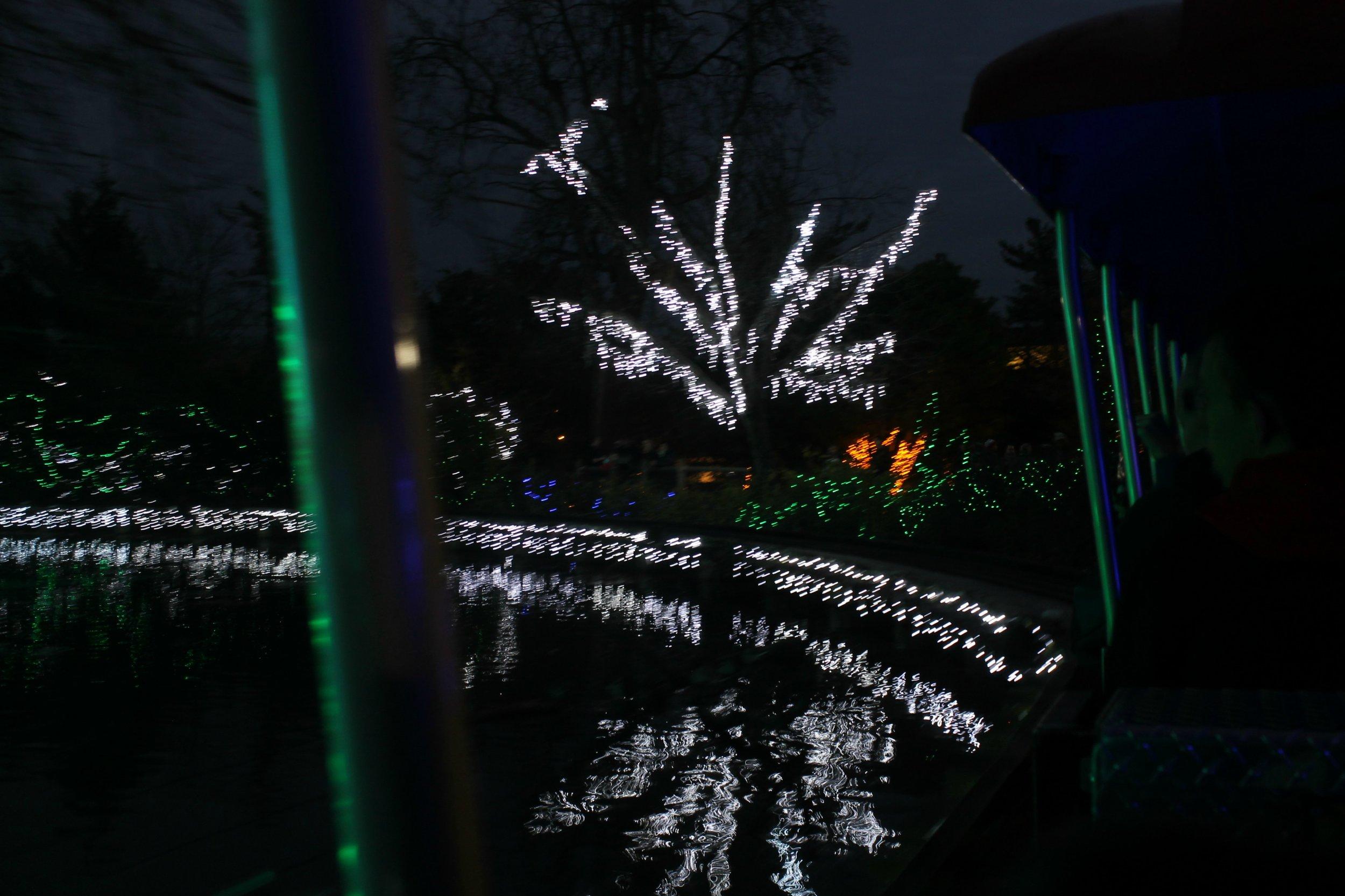 lights6.jpg