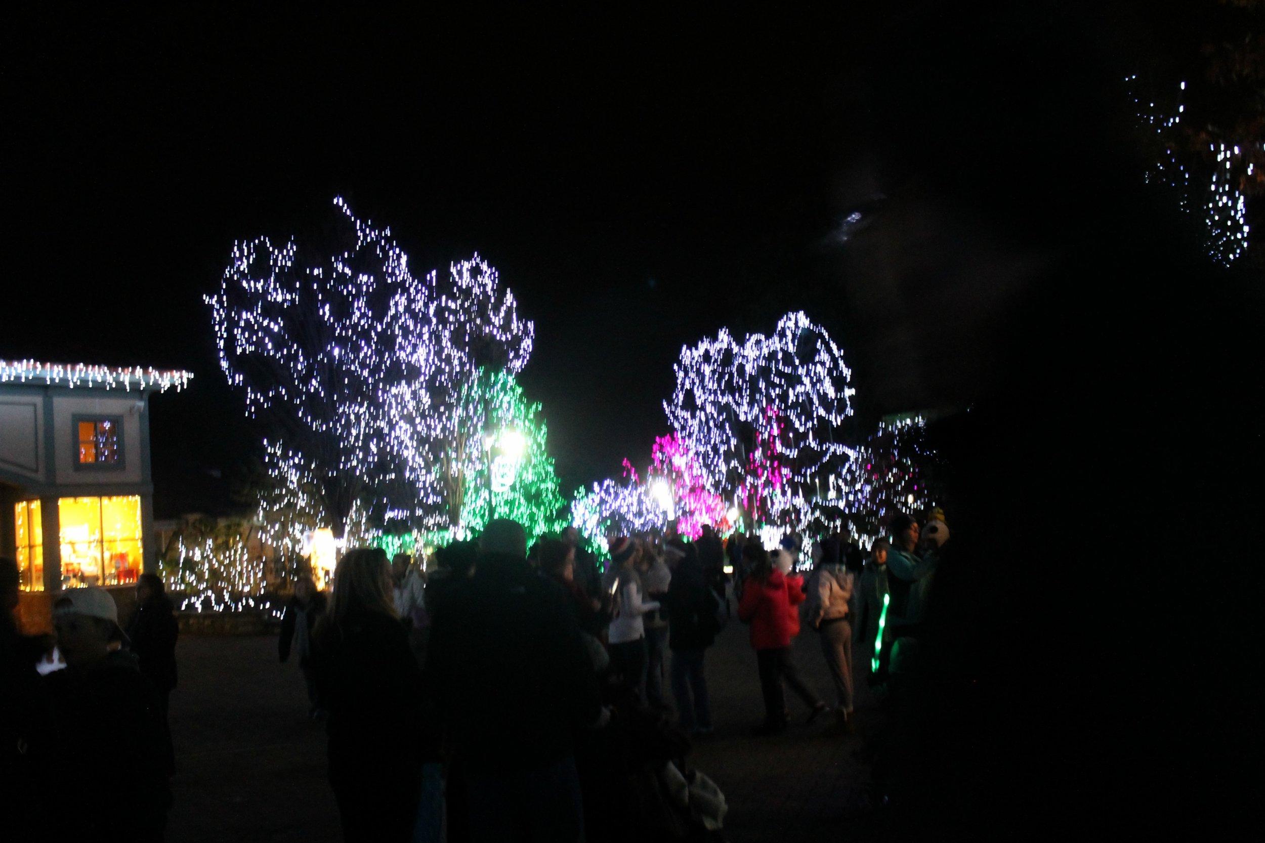 lights7.jpg